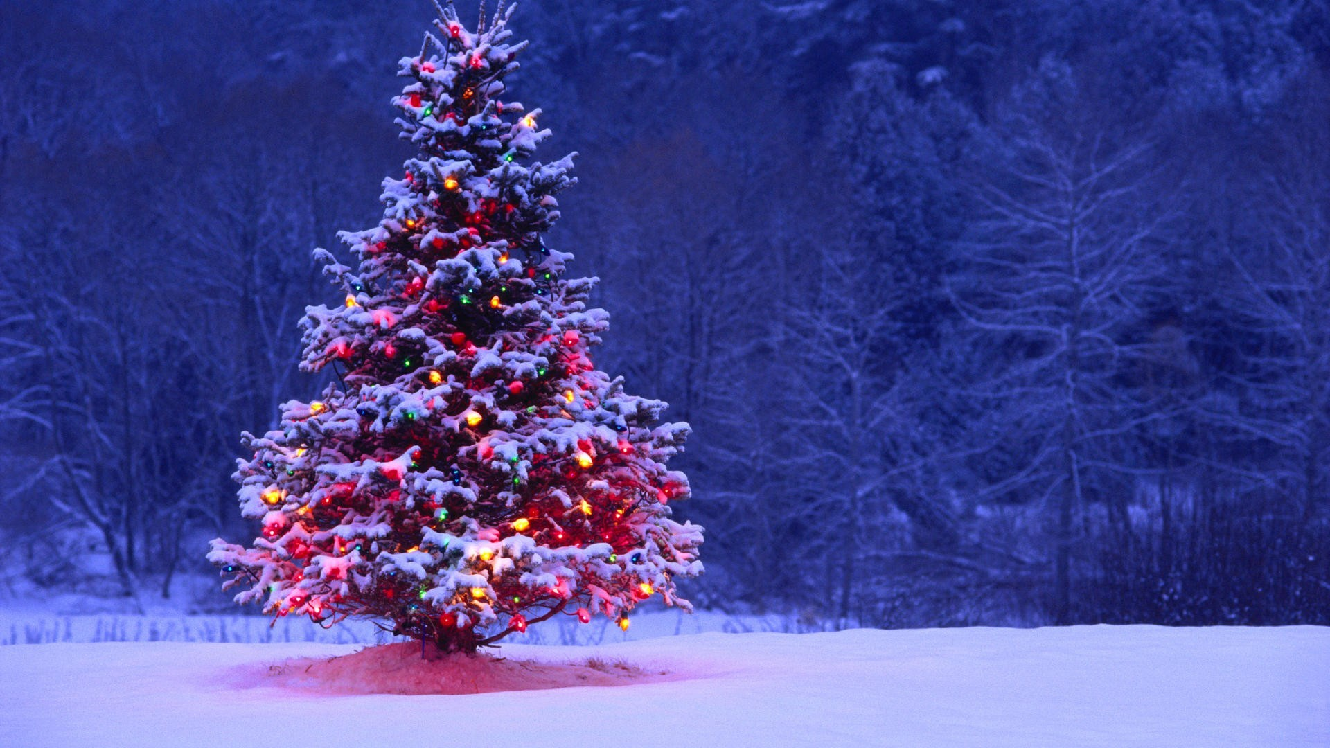 animated christmas wallpaper (58+ images)