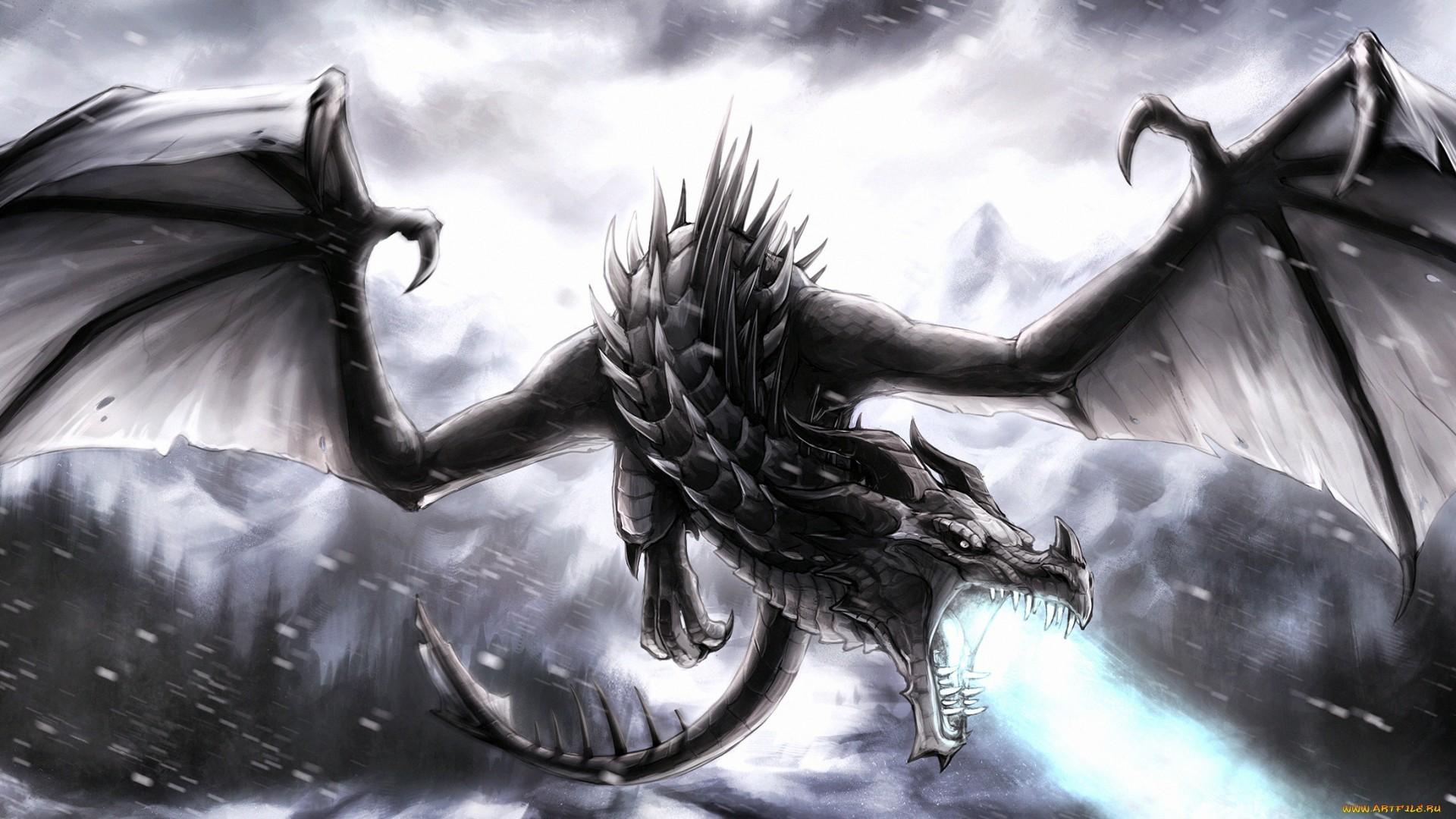 Black dragon wallpaper widescreen