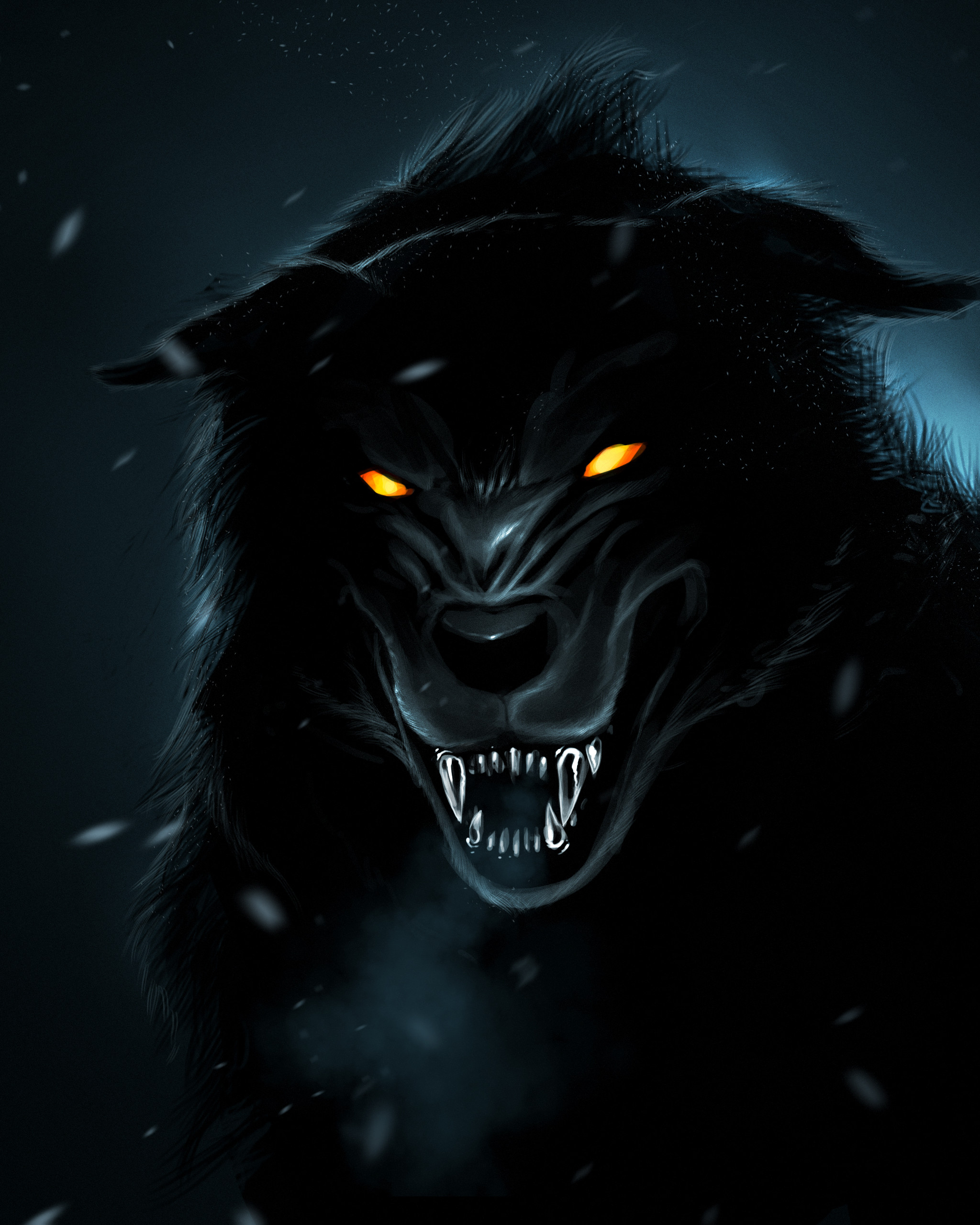 2560x1600 Wallpapers For Cool Animal Wallpaper Light Wolf