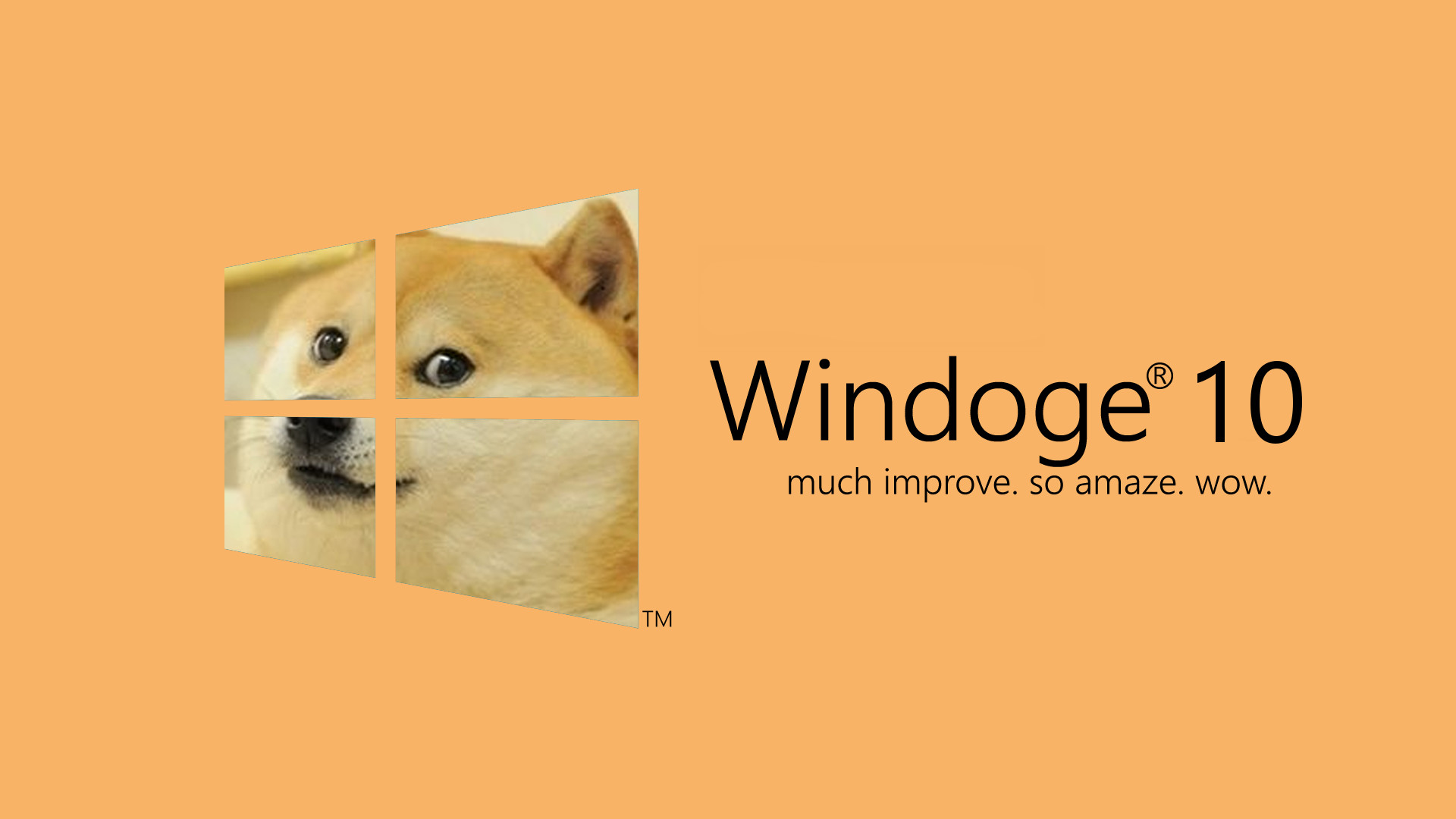 1920x1080 Image - 644871] | <b>Doge</b> | Know Your