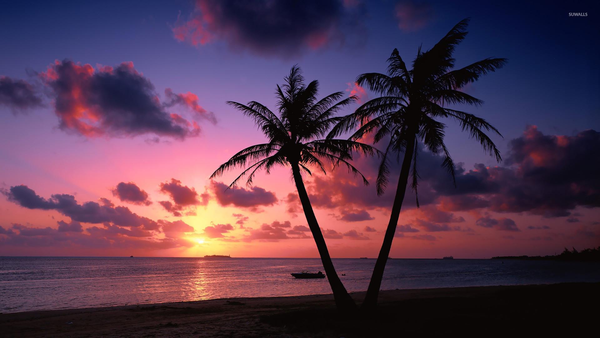 1920x1080 Sunset Palm Trees Wallpaper 1920A 1080 Beach Wallpapers 32