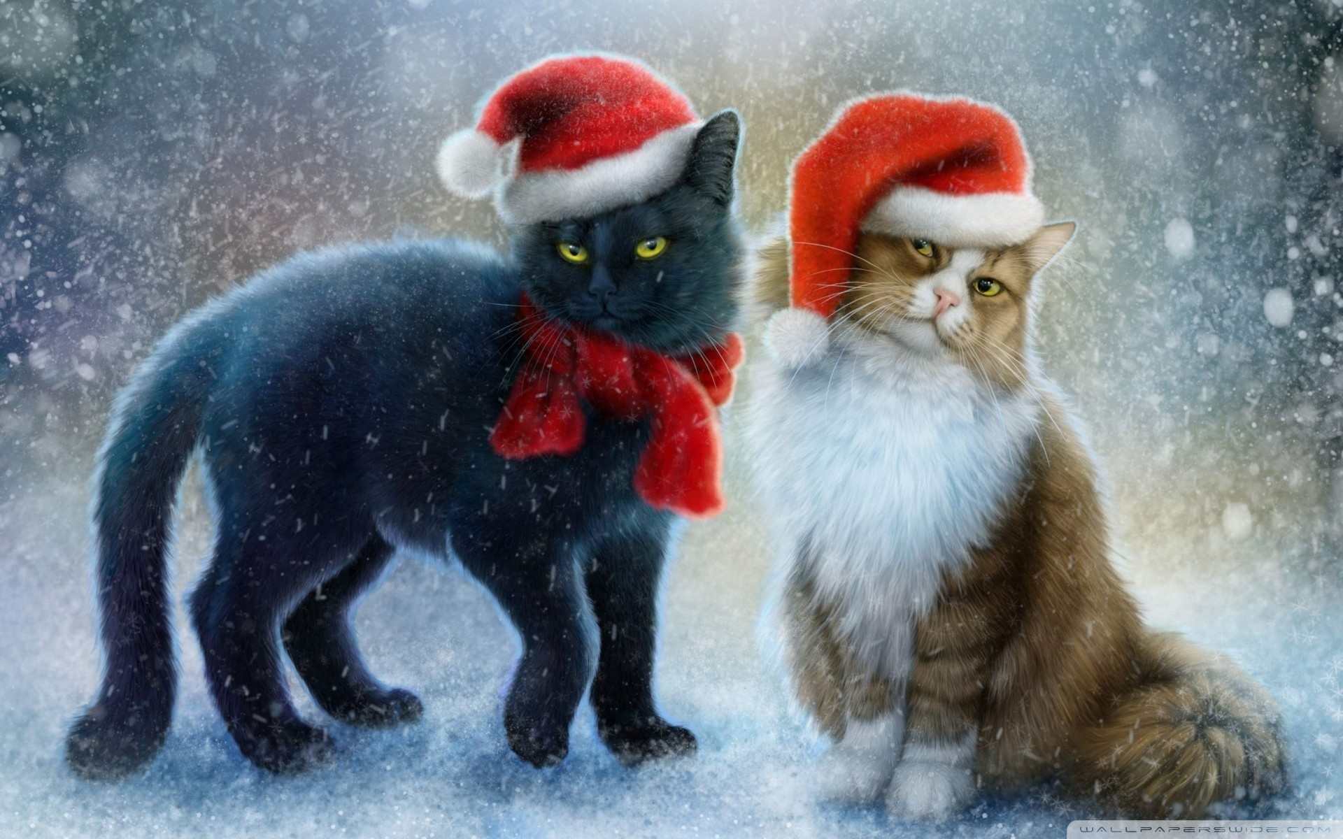 Black Cat Christmas Wallpaper (55+ images)