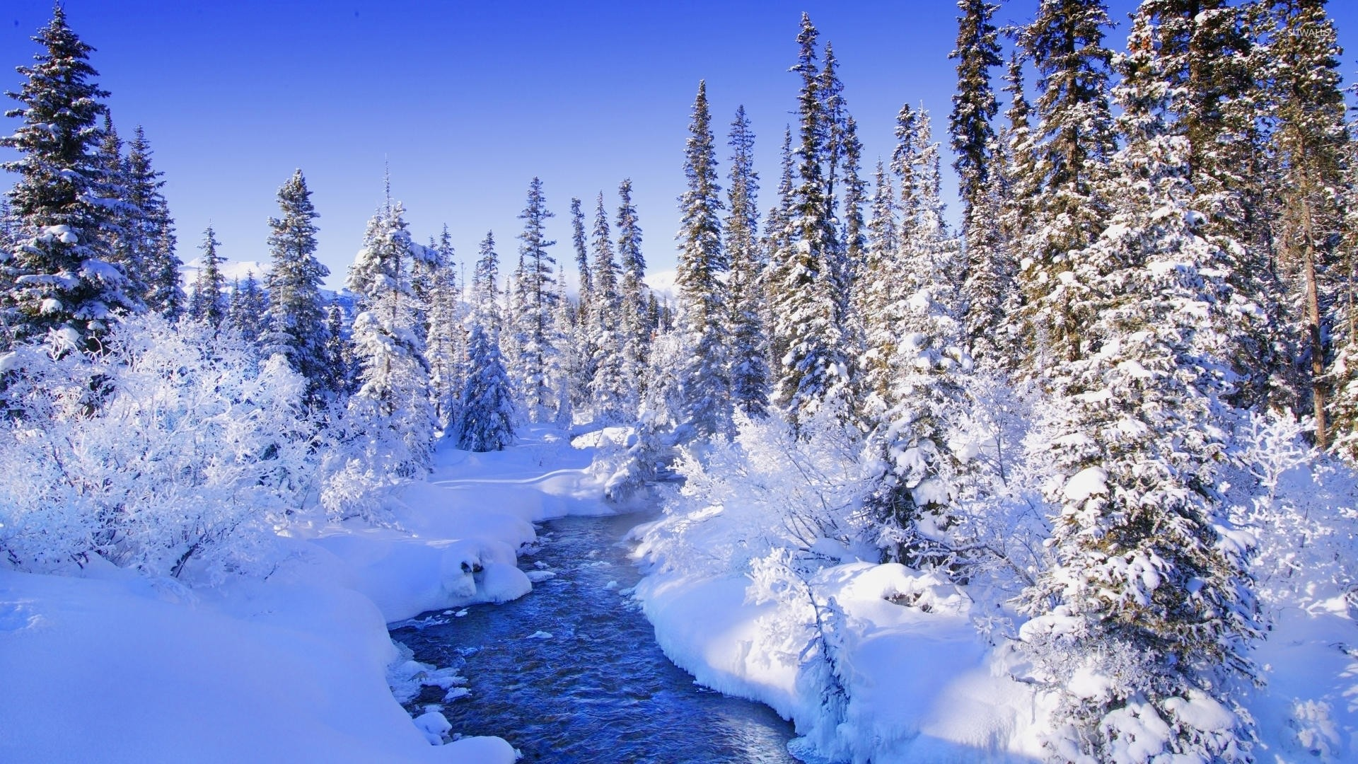 1920x1080 Steamy river by the snowy forest wallpaper - Nature wallpapers .