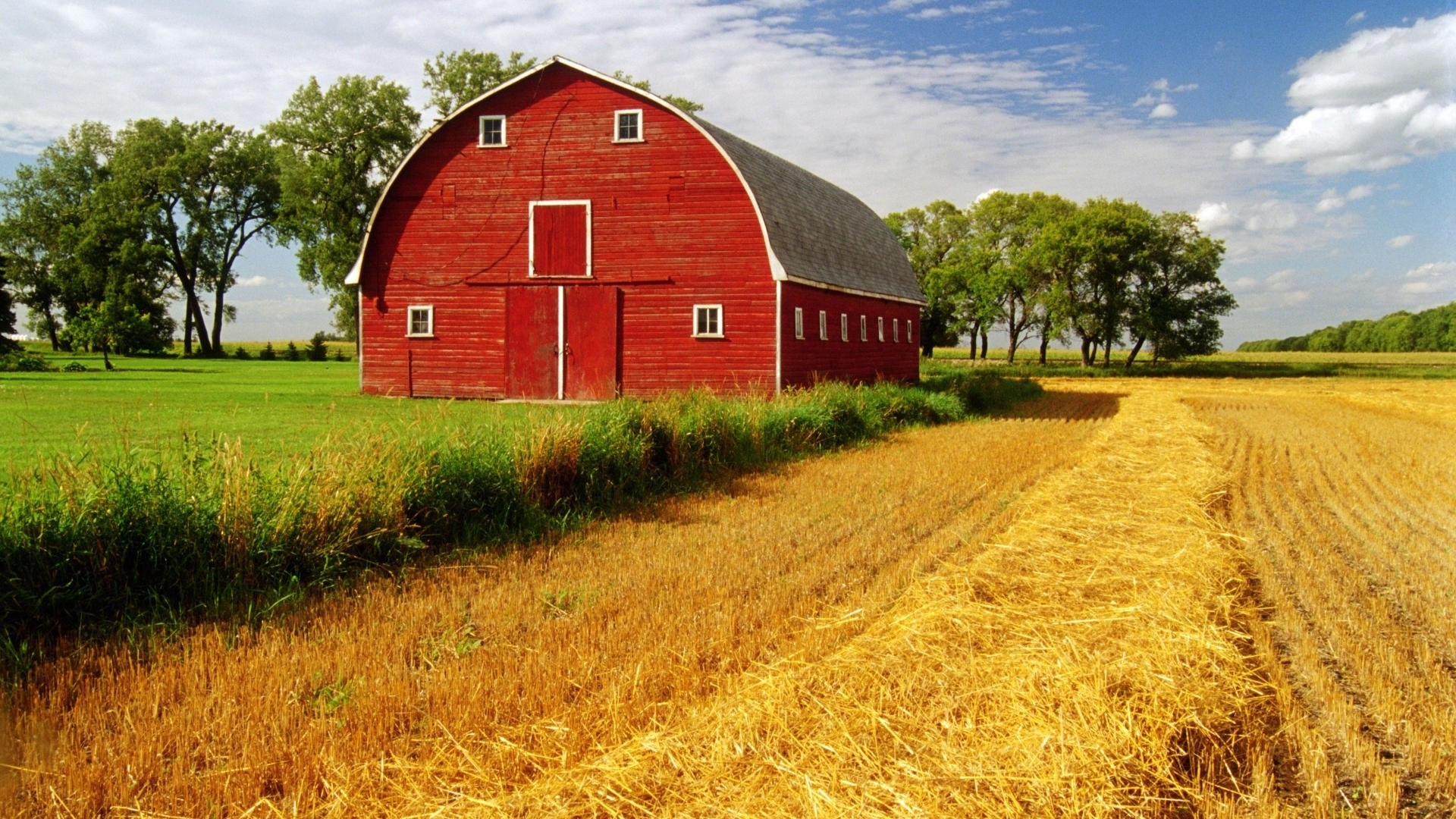 Farm background pictures 32 images 1920x1080 farm landscapes fields crop grass sky clouds wallpaper background voltagebd Gallery
