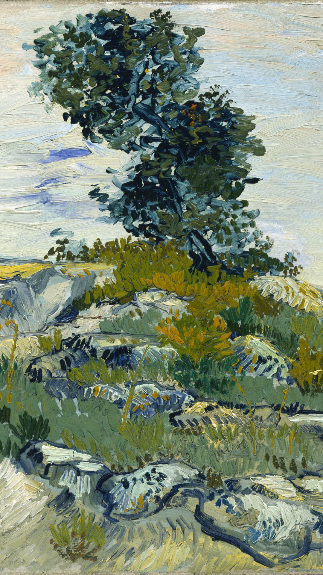 Van Gogh Desktop Wallpaper 51 Images