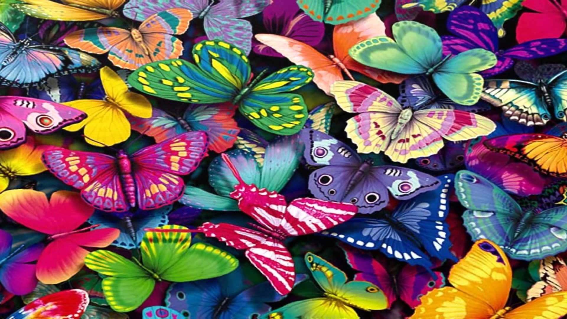 1920x1080 Butterfly Wallpaper (Fantastic) HD