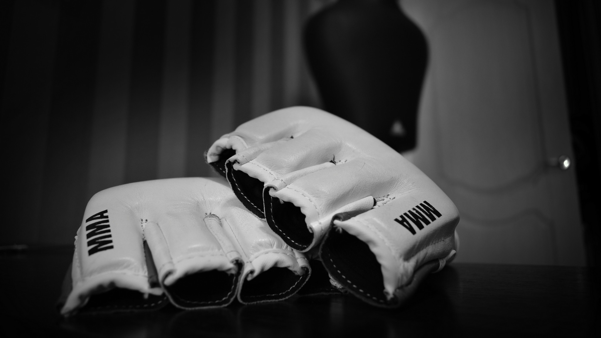 2048x1152  Wallpaper mixed martial arts, mma, wrestling, bw, gloves