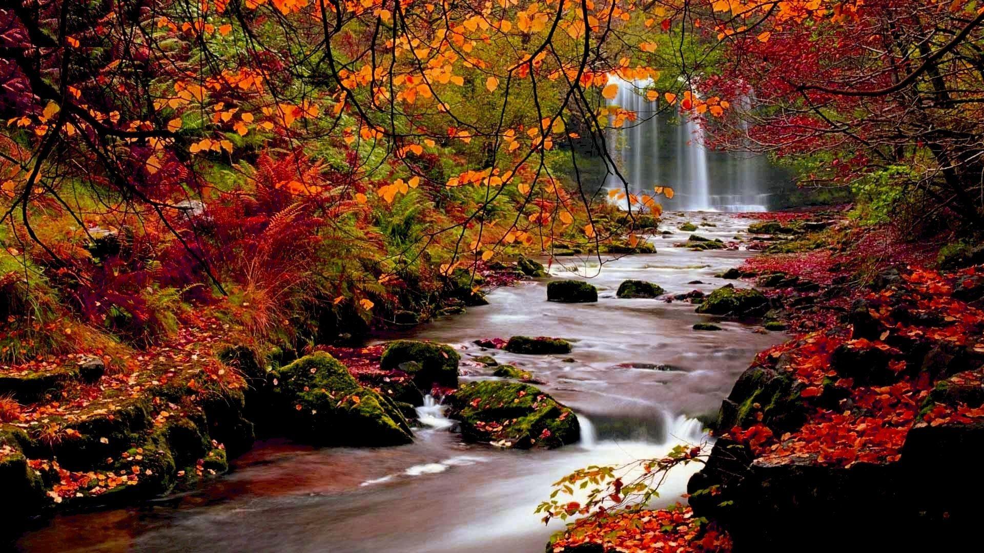 Desktop Wallpaper Autumn Scenes 41 Images