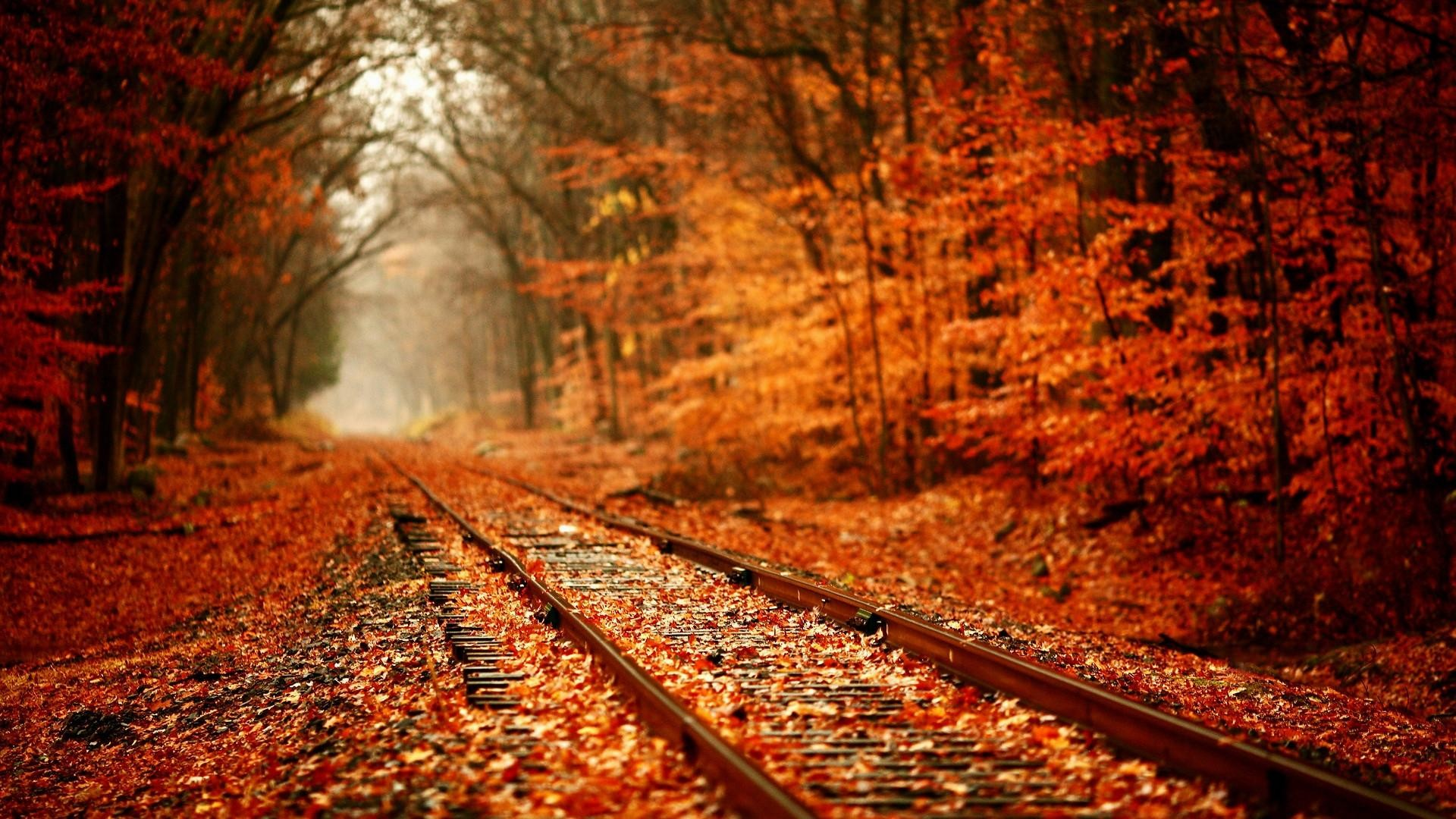 Autumn Wallpaper: 1920x1080 HD Autumn Wallpapers (61+ Images
