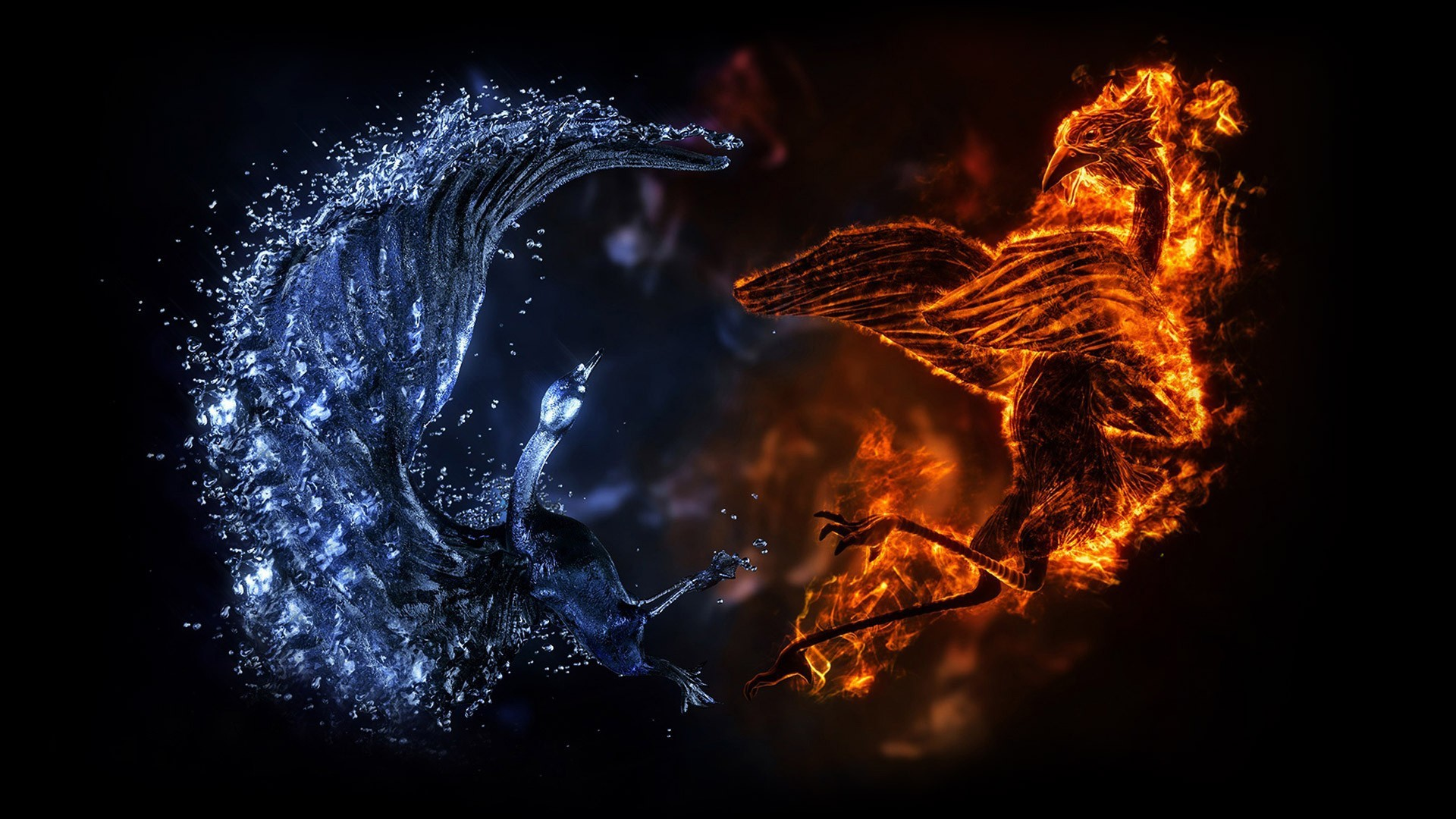 1920x1080 Battle of fire and water dragons wallpapers and images .