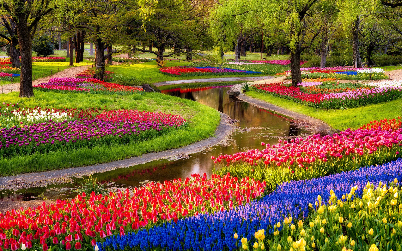 Flower Garden Wallpaper 67 Images