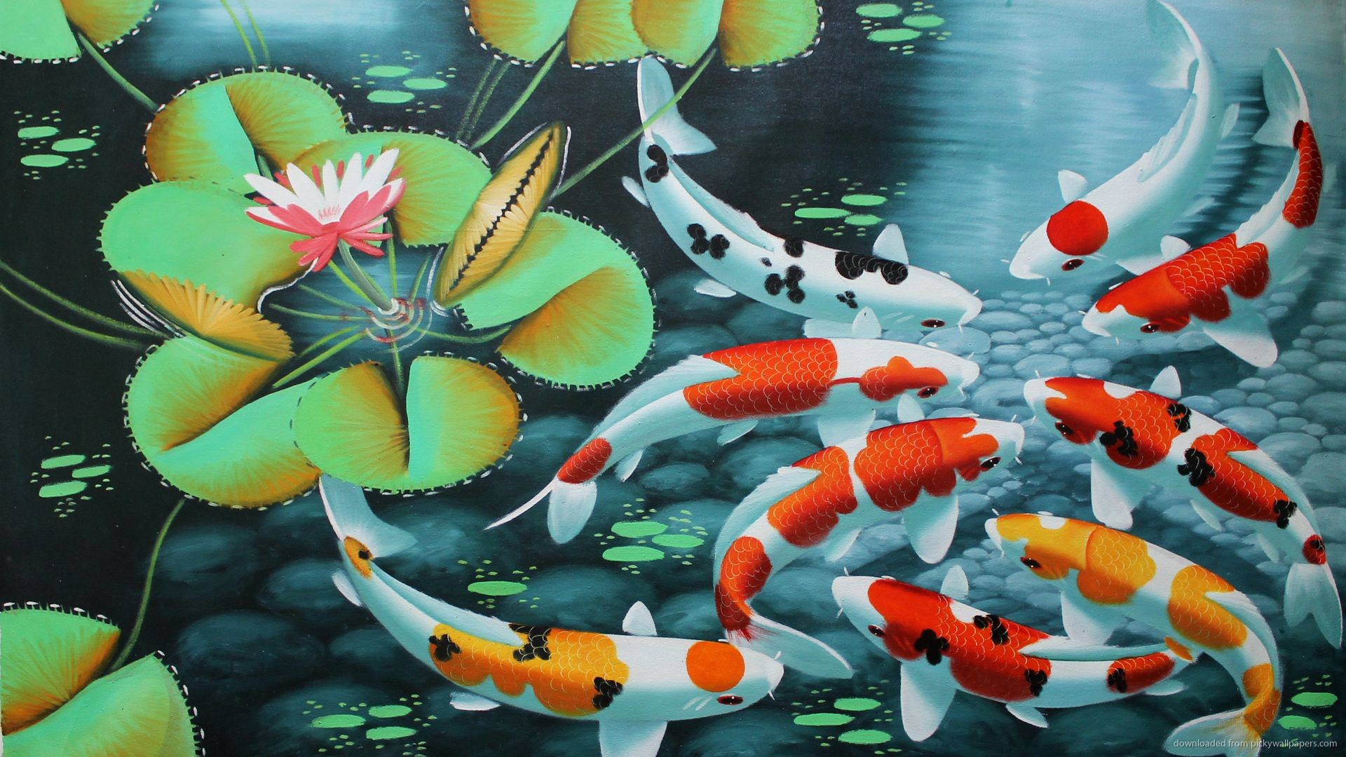 3000x1880 Koi Wallpaper, koi carp, fishes wallpaper, asian wallpaper, asian decor, Koi Fish Wall, japanese wallpaper, Koi Fish Wallpaper, japan carp