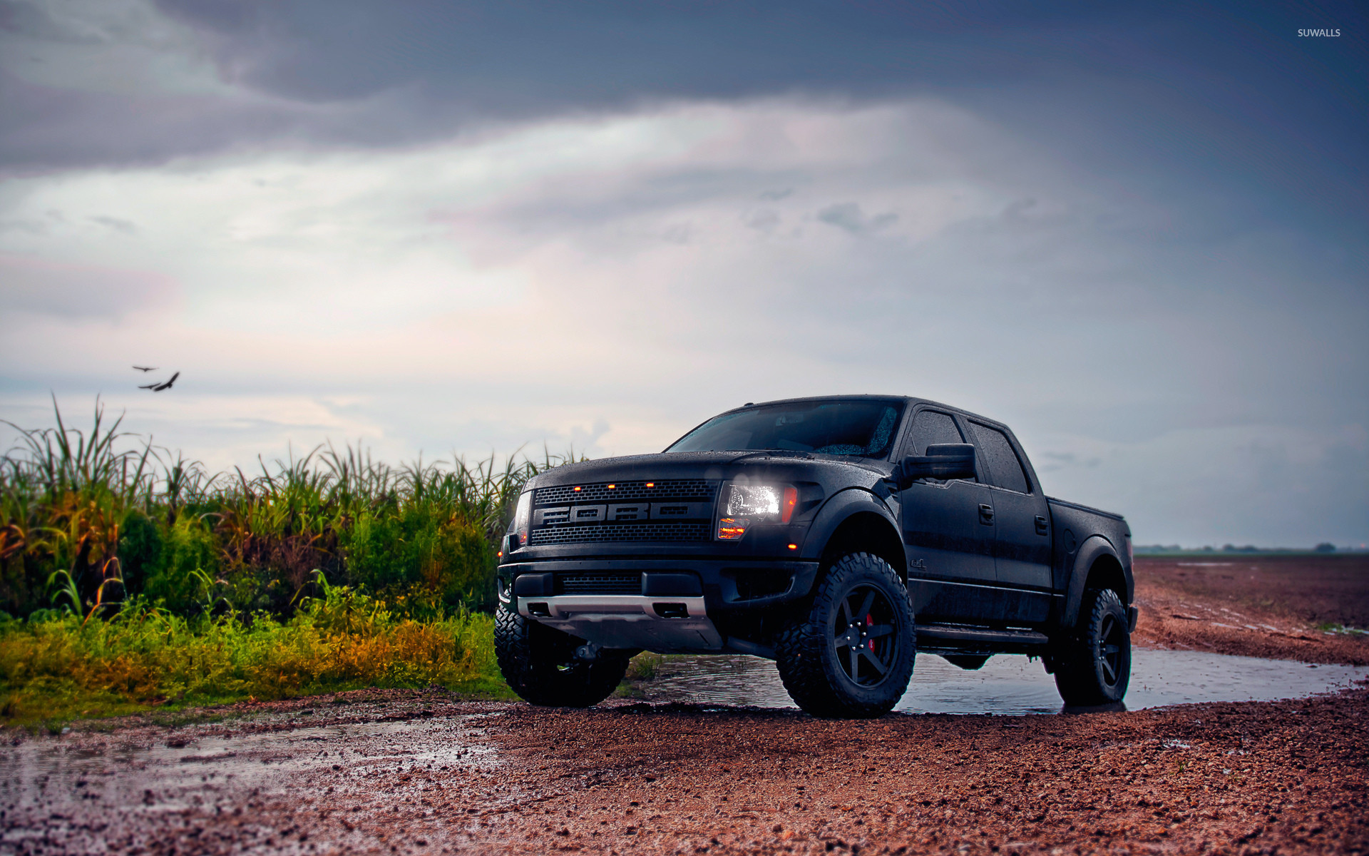 1920x1200 Front side view of a black Ford F-150 Raptor wallpaper