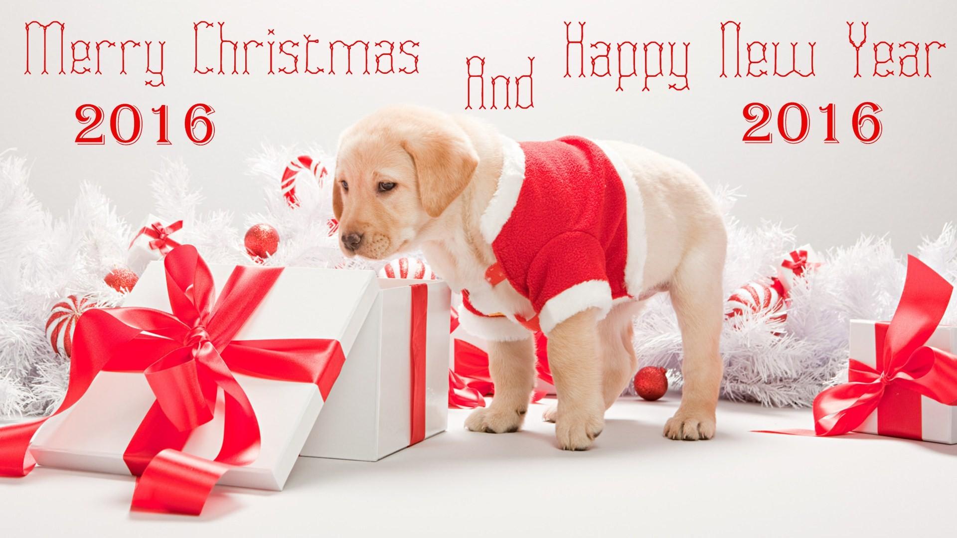 Cute Christmas wallpaper  Download free beautiful HD