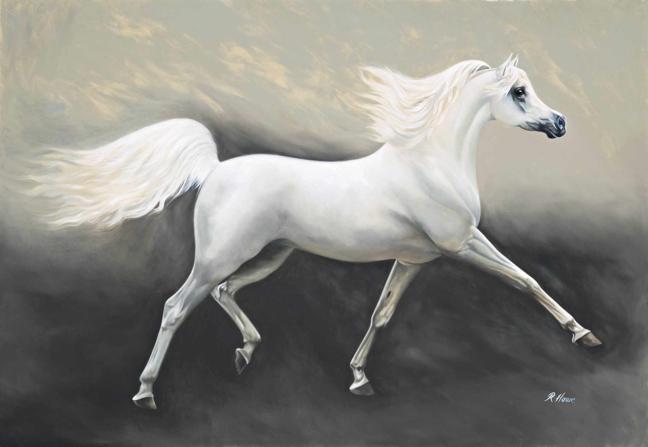 2218x1531 Arabian Horse HD Wallpapers | Horse Desktop Images | Cool Wallpapers 2 .