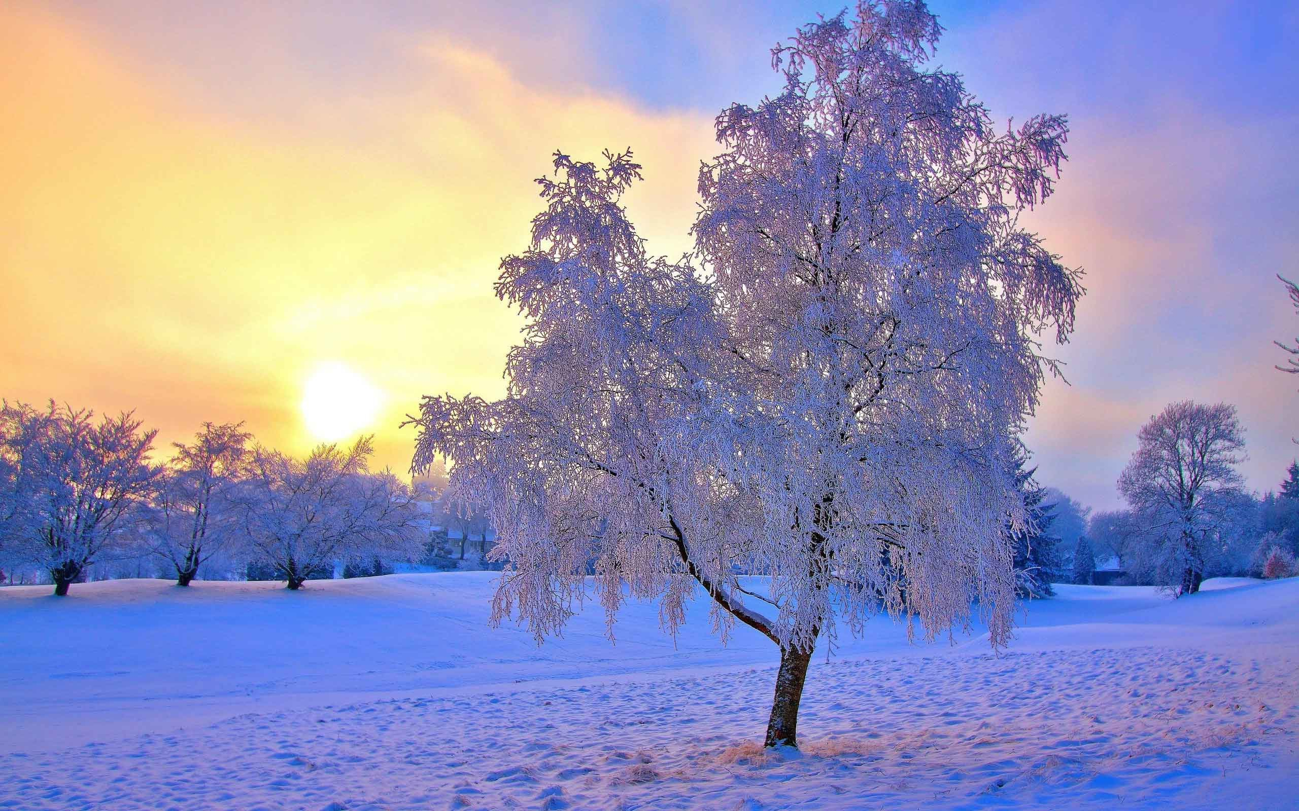 winter landscape wallpapers 68 images