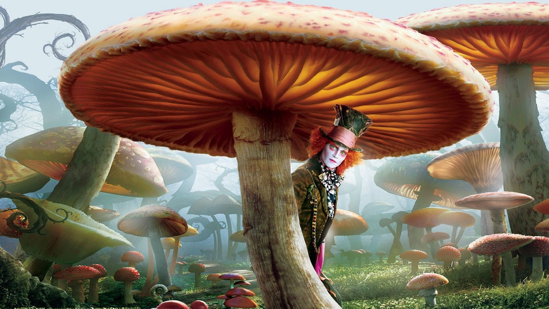 1920x1080 Mad Hatter - Alice in Wonderland HD Wallpaper  Mad ...