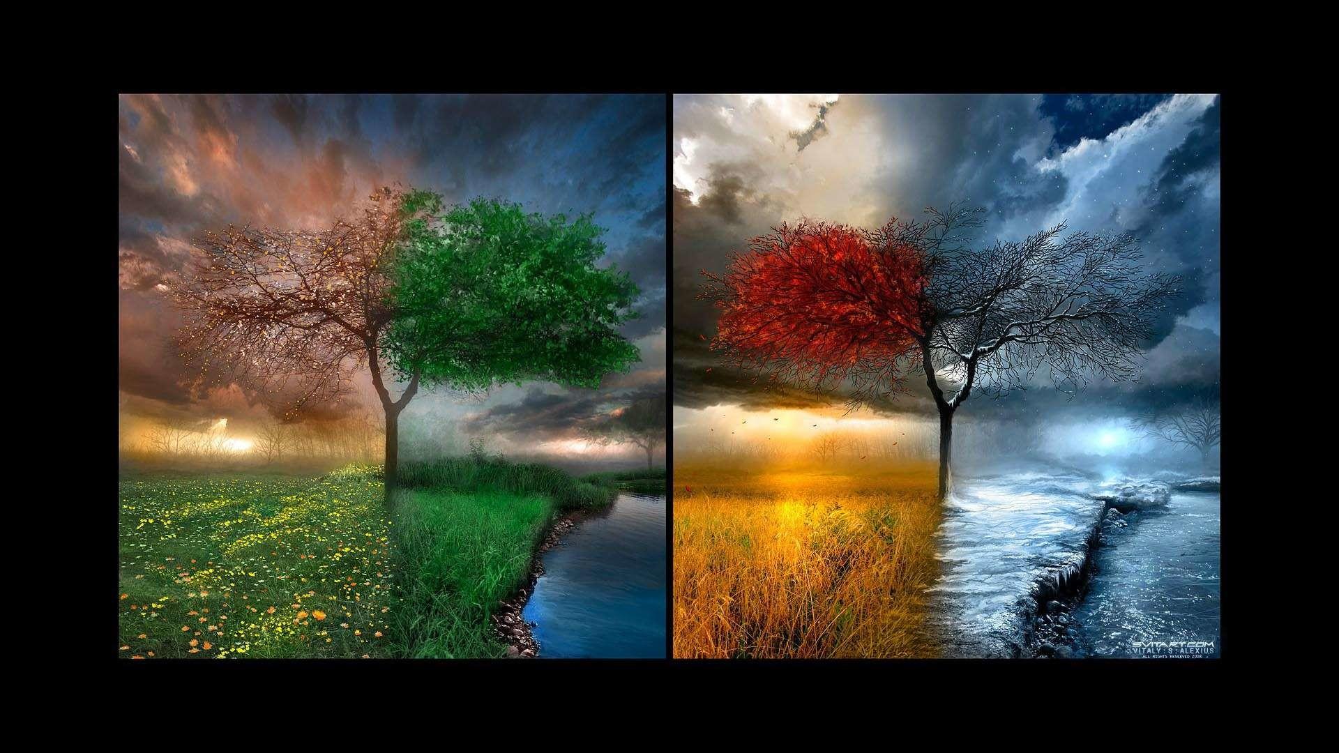 Four Seasons Wallpaper (53+ Images