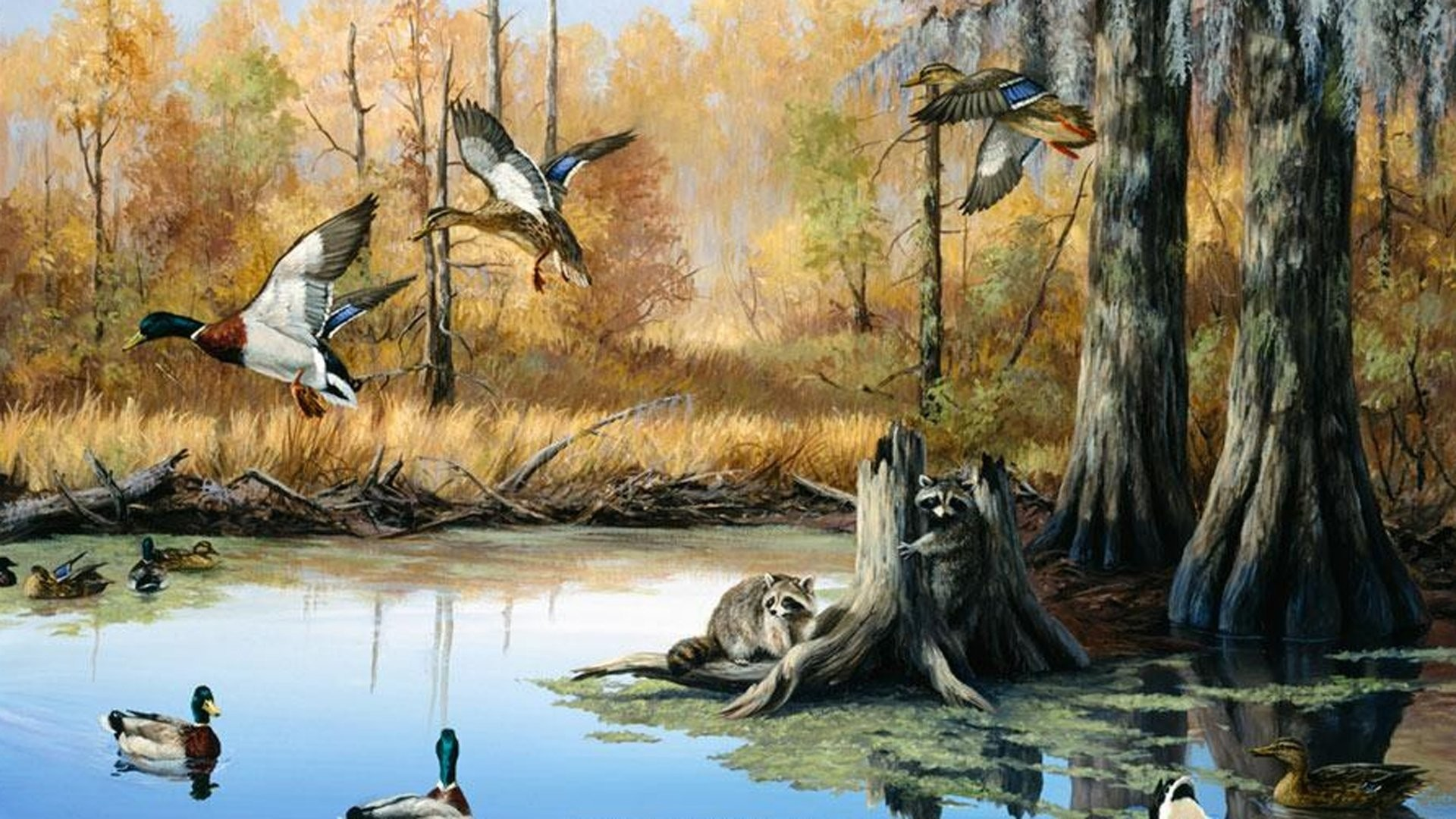 1920x1080 Awesome Duck Hunting Wall Murals Nice Design