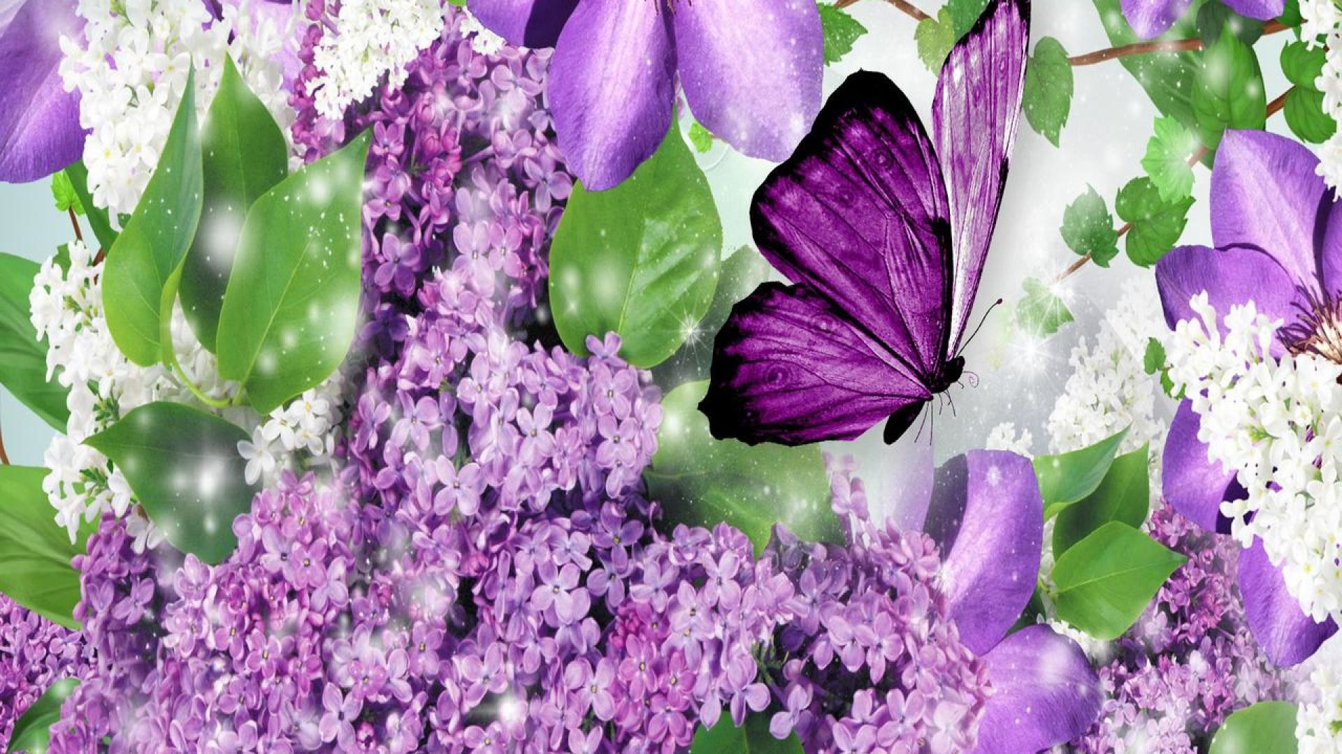 Purple Butterfly Wallpapers (63+ images)