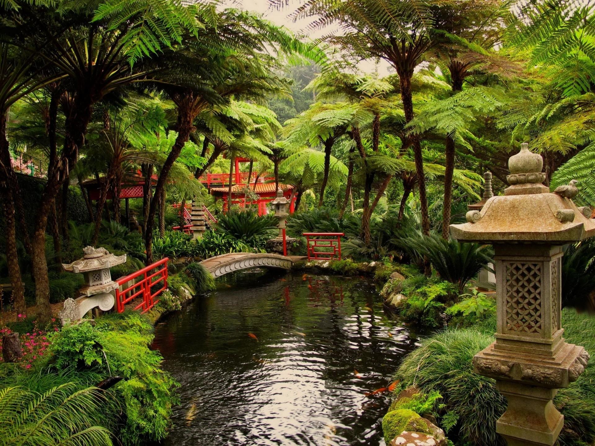 Japanese Zen Garden Wallpaper (56+ images)