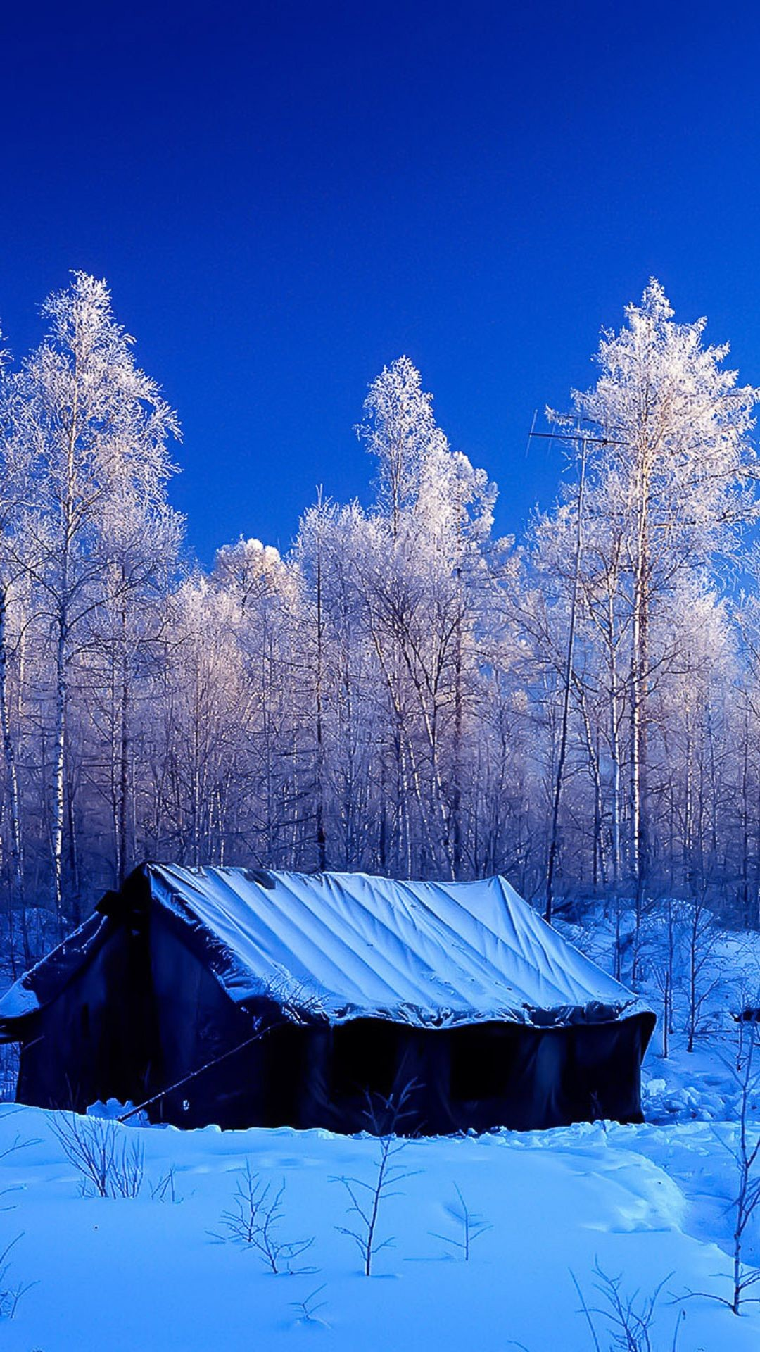 Snow Screensavers And Wallpaper 60 Images