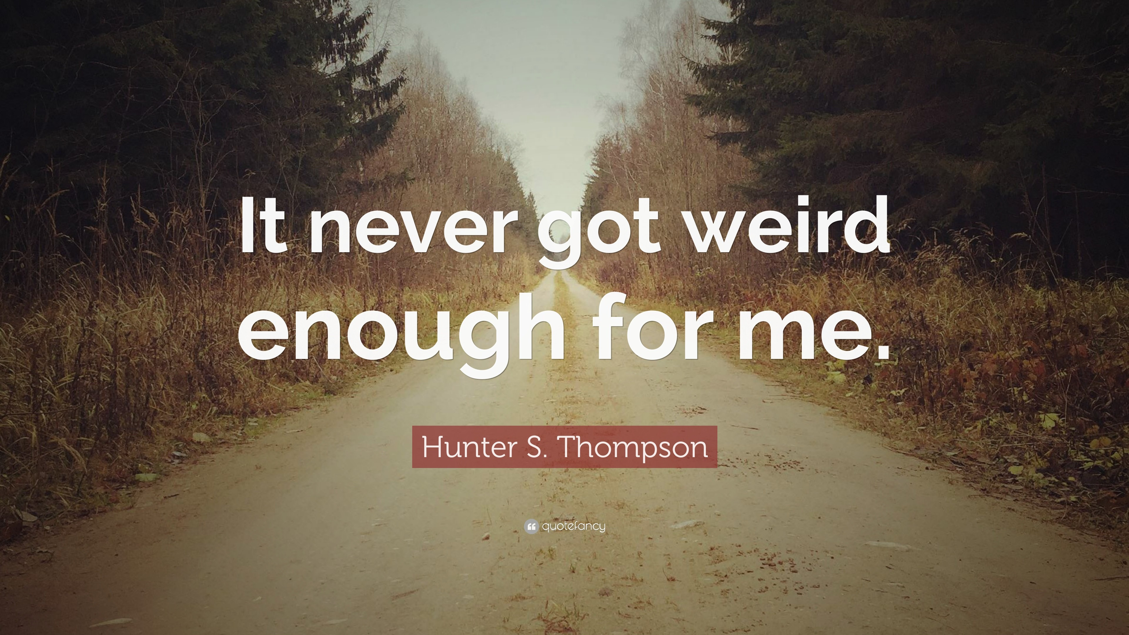3840x2160 Hunter S Thompson Quotes 100 Wallpapers Quotefancy