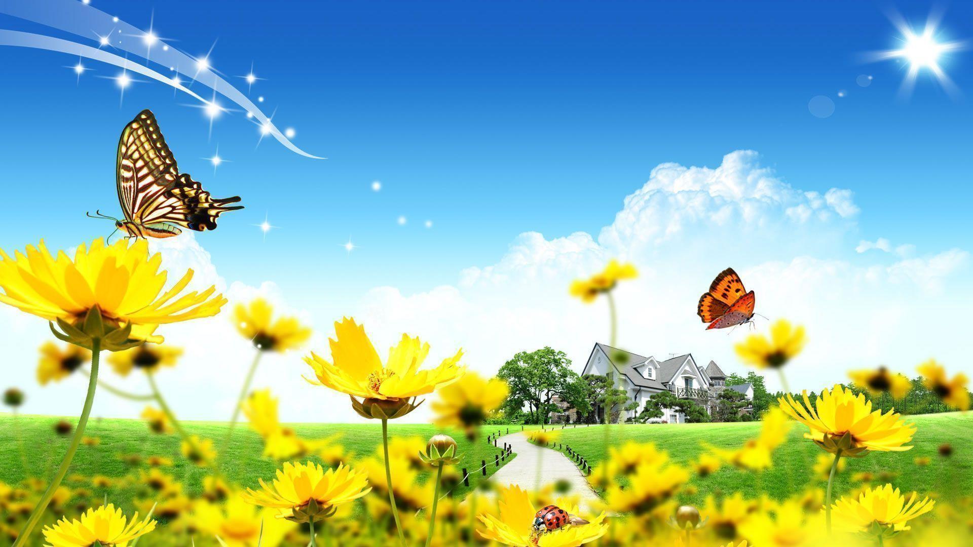 Beautiful Wallpaper Name Kamran - 78979  Image_49421.jpg