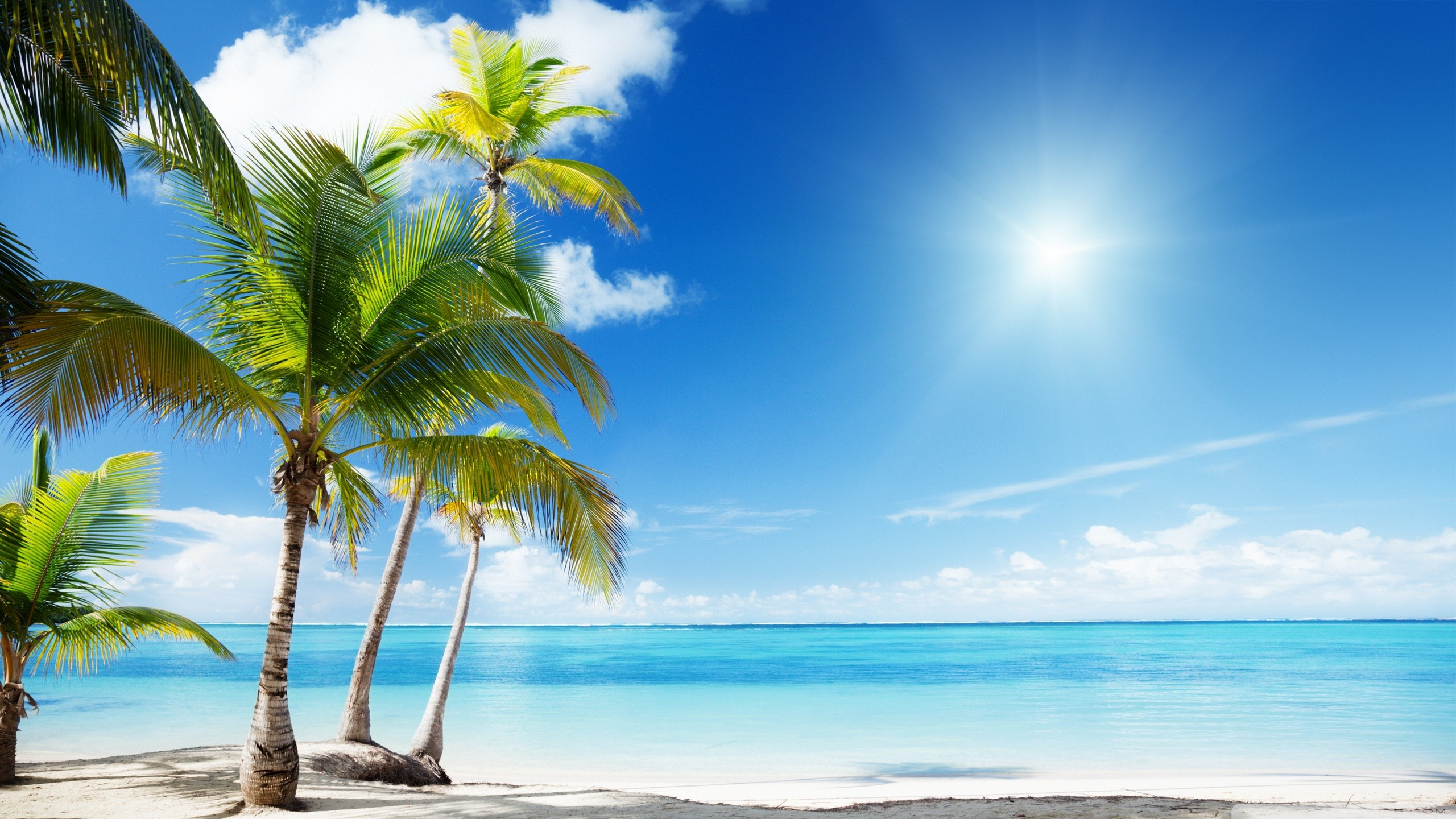 2880x1800 Tropical Beach Wallpapers THIS Wallpaper