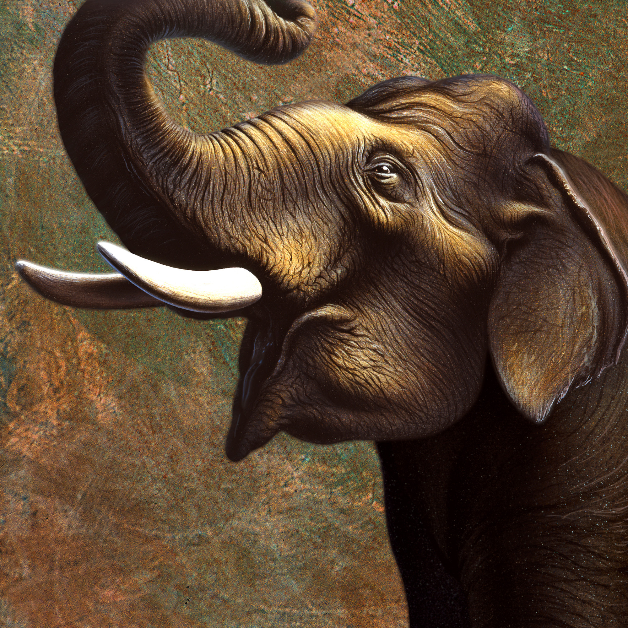 African Elephant Wallpaper (68+ images)
