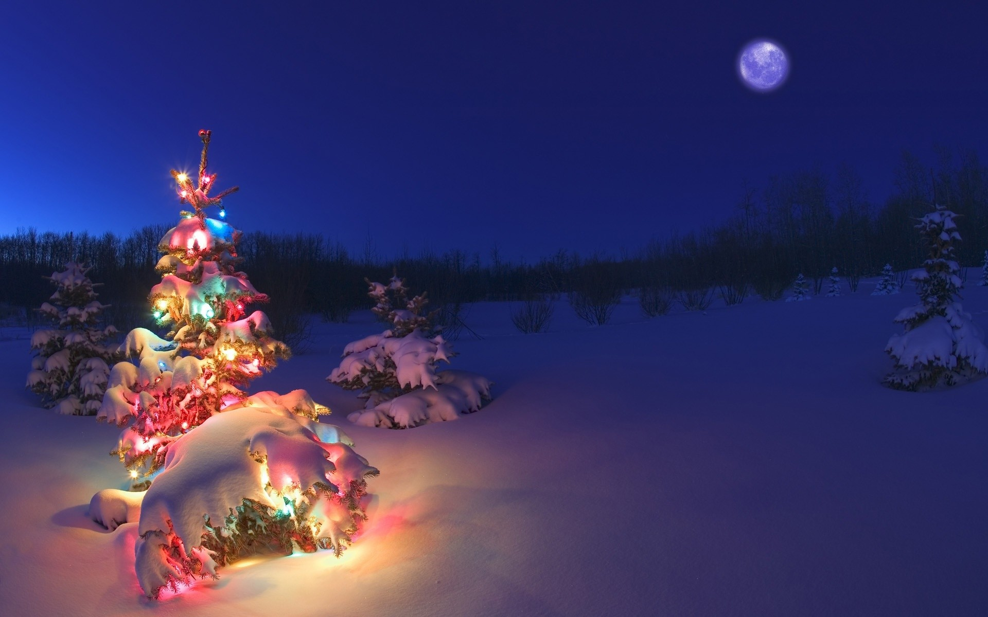 1920x1200 Holiday - Christmas Christmas Lights Christmas Tree Snow Winter Wallpaper