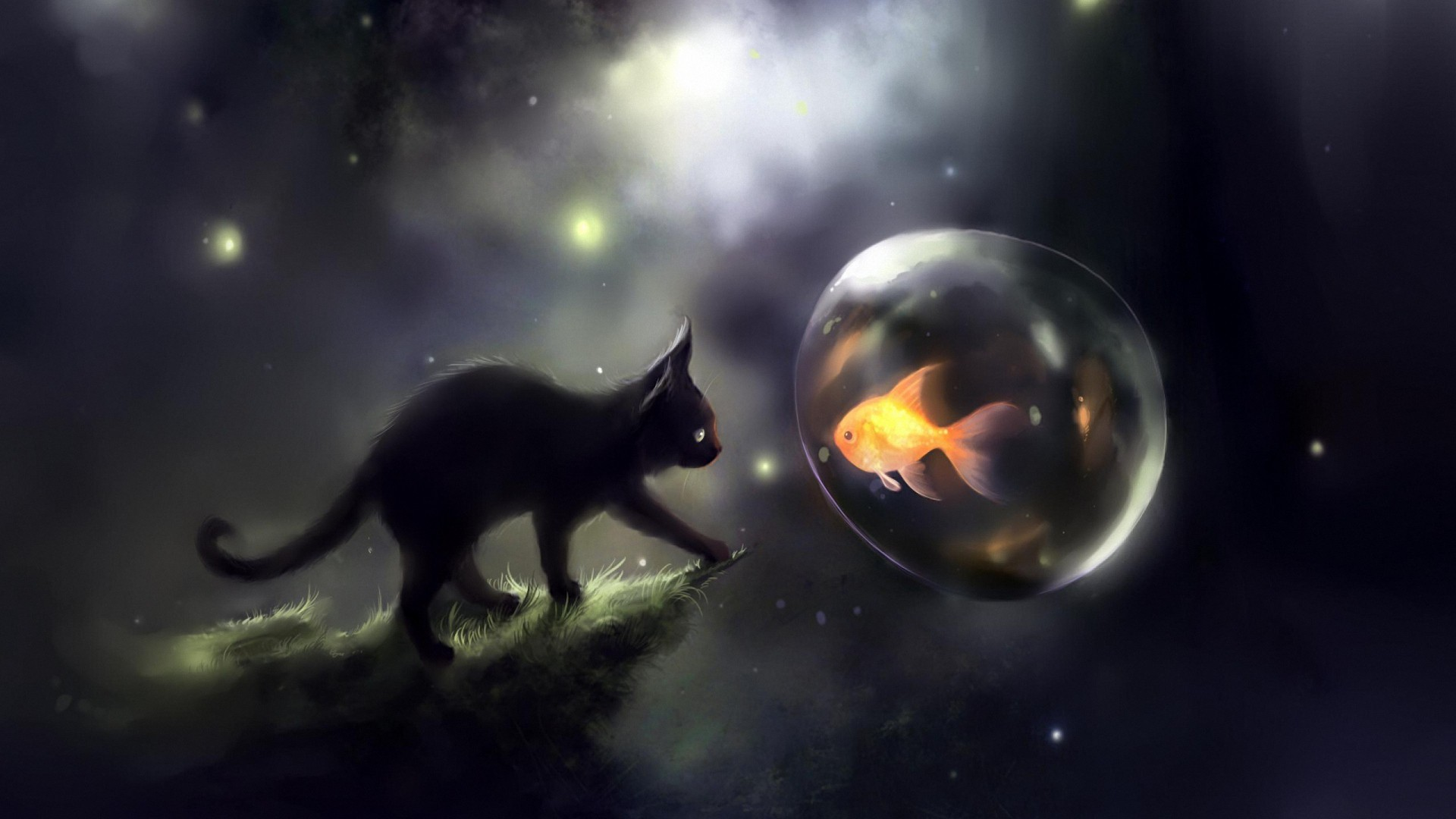 1920x1080 cute space cat fish hd wallpapers