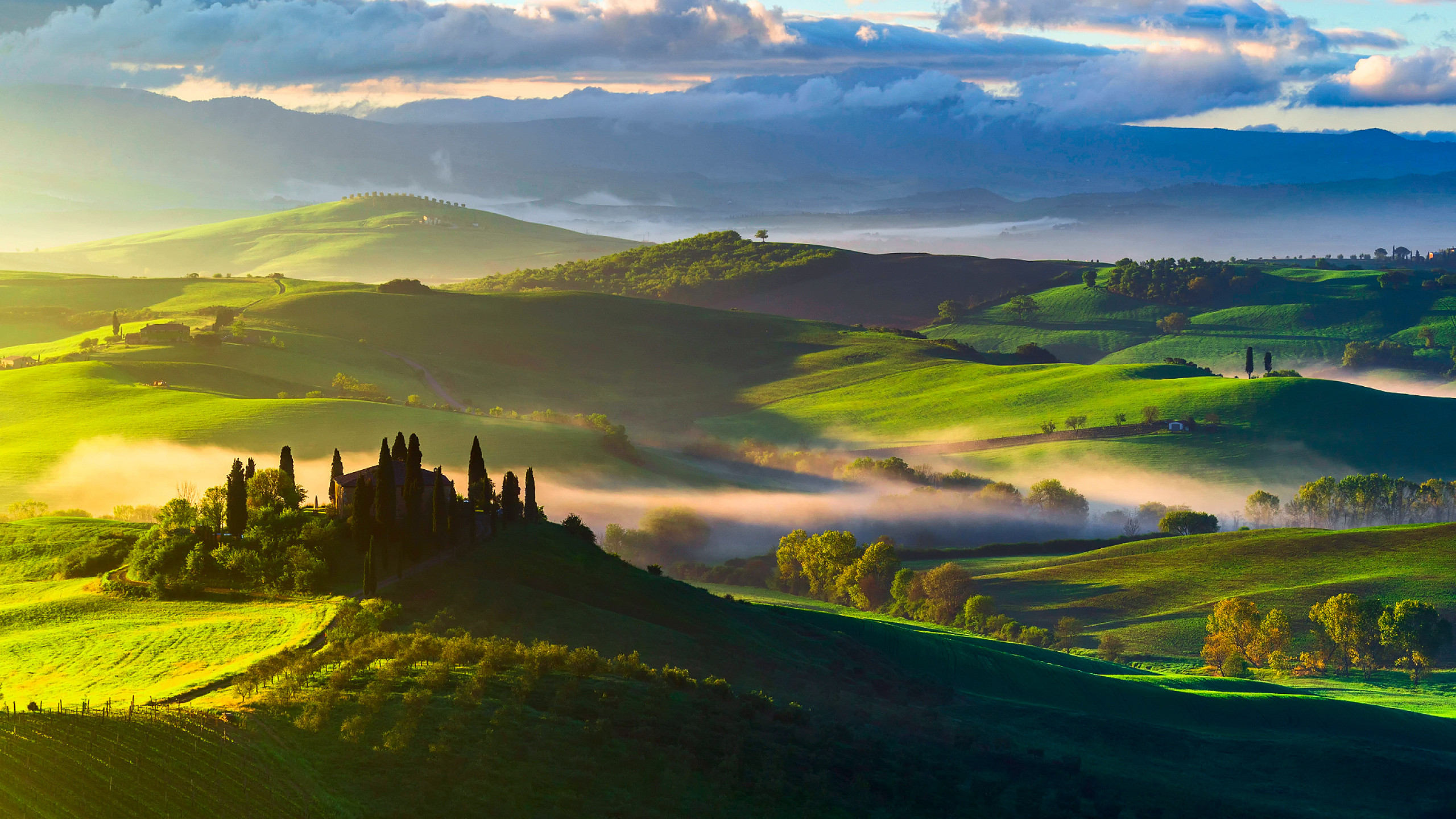 2560x1440  Wallpaper italy, tuscany, fields, trees, top view, fog