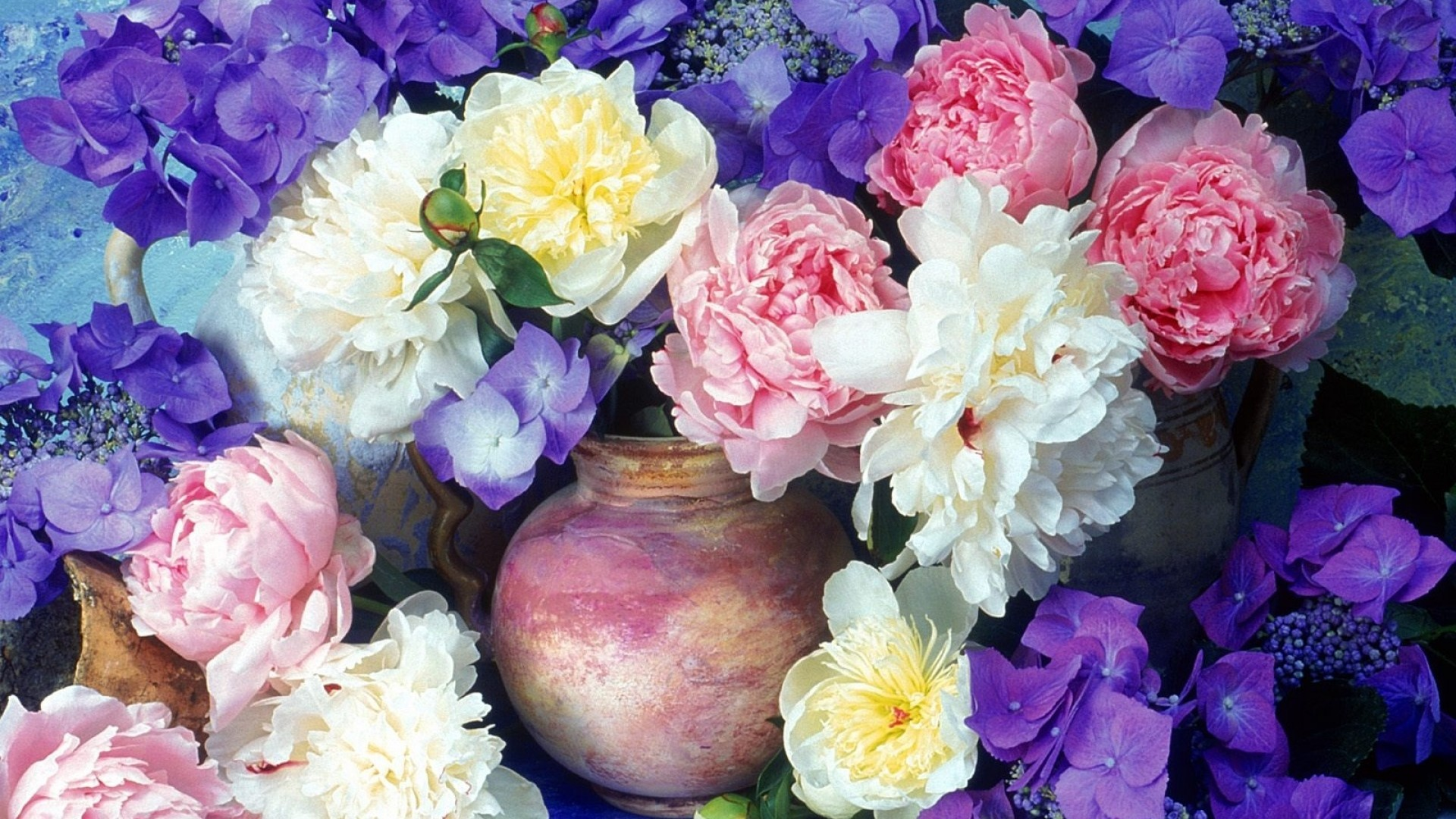 1920x1080 Download Wallpaper  Peonies, Hydrangea, Flowers .