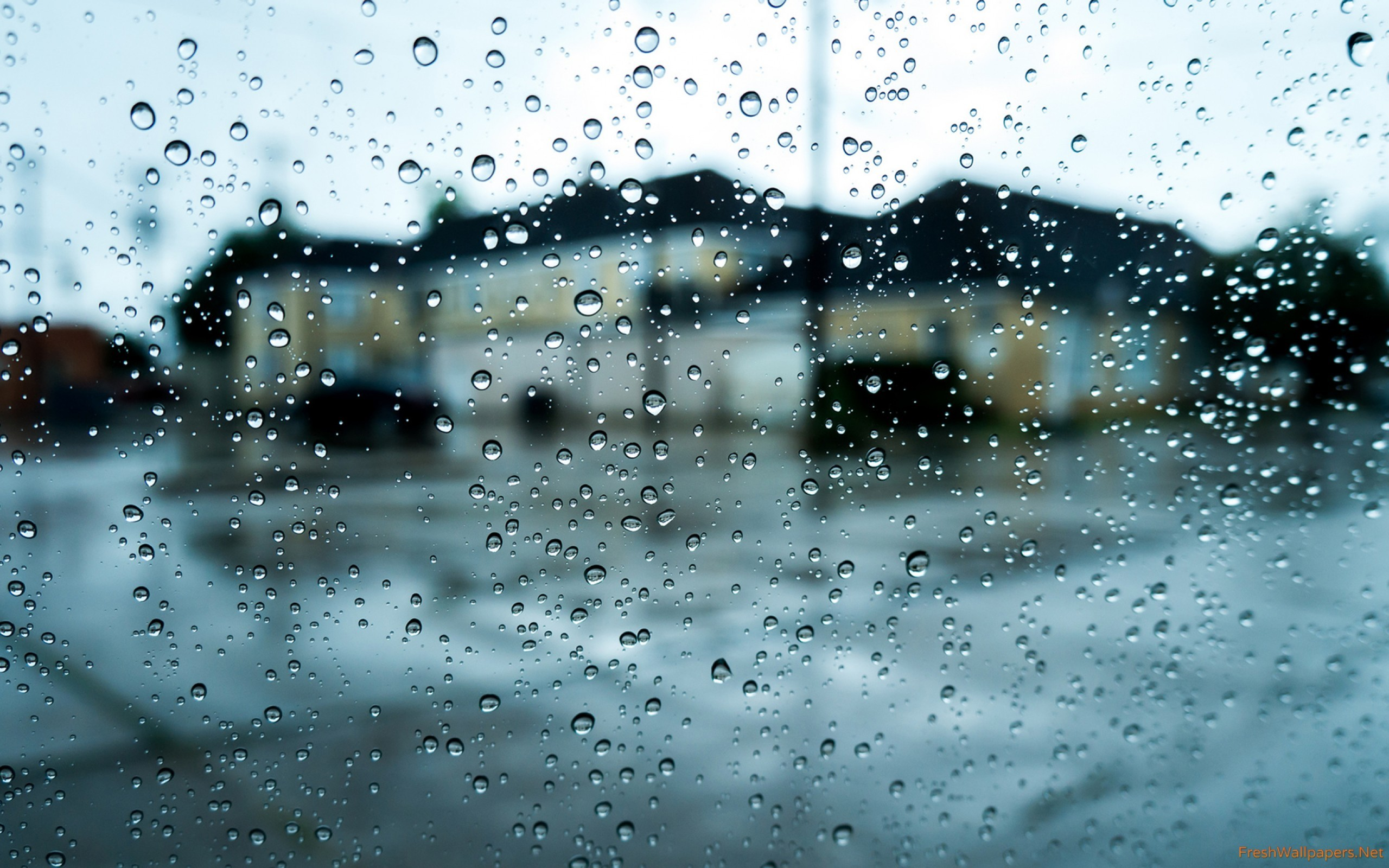 Rain Drop Wallpaper 77 Images