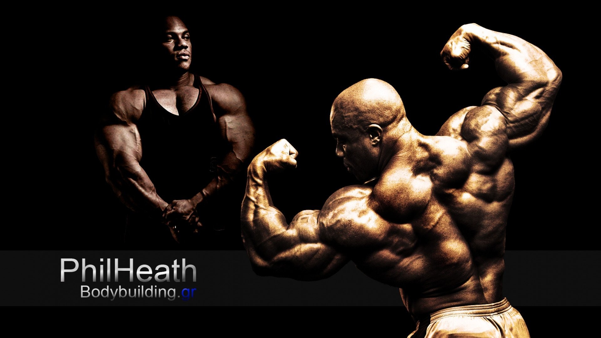 1920x1080 Body-building fitness muscle muscles weight lifting Bodybuilding (70)  wallpaper |  | 415591 | WallpaperUP