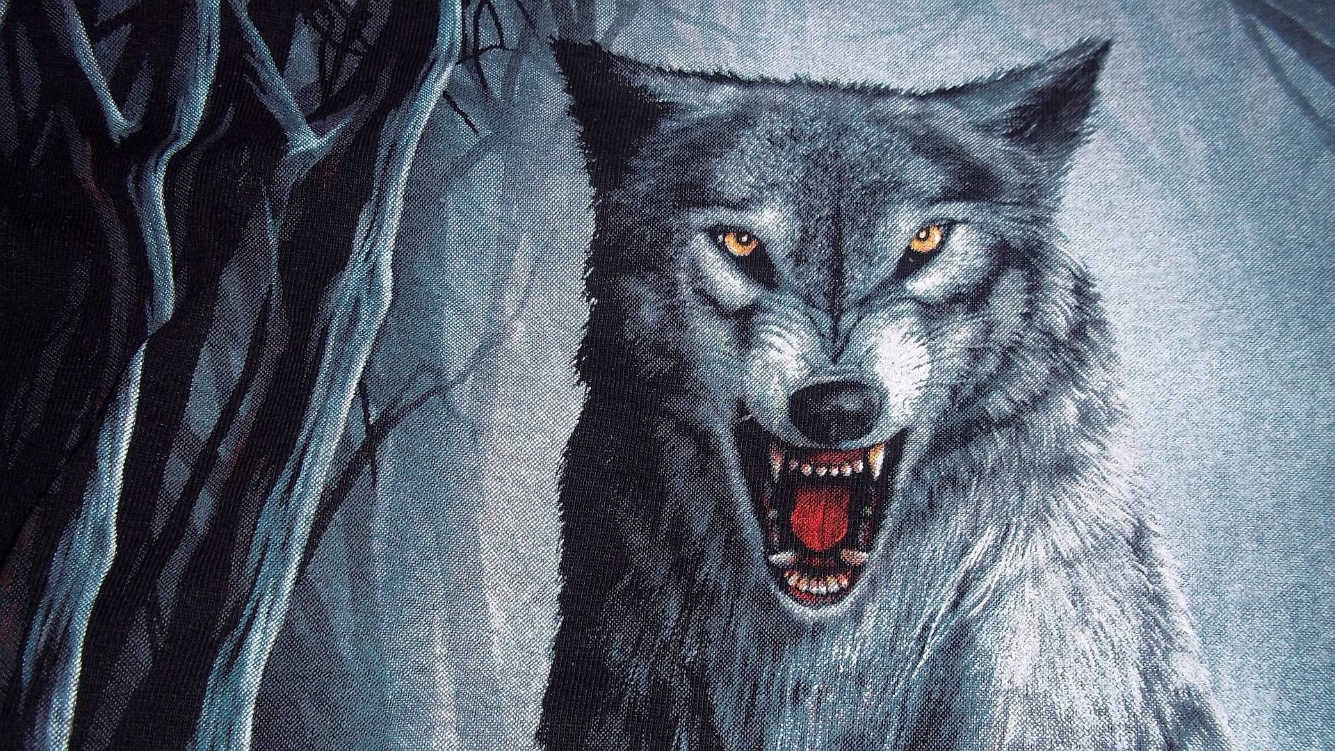 1920x1080 Free Wolf Backgrounds - Wallpaper Cave Wolves Wallpapers Free - Wallpaper  Cave ...