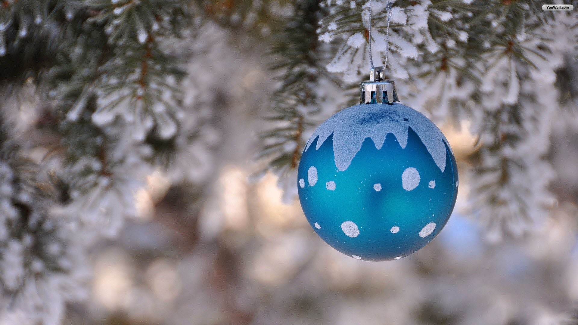 Blue And Silver Christmas Tree Decorations