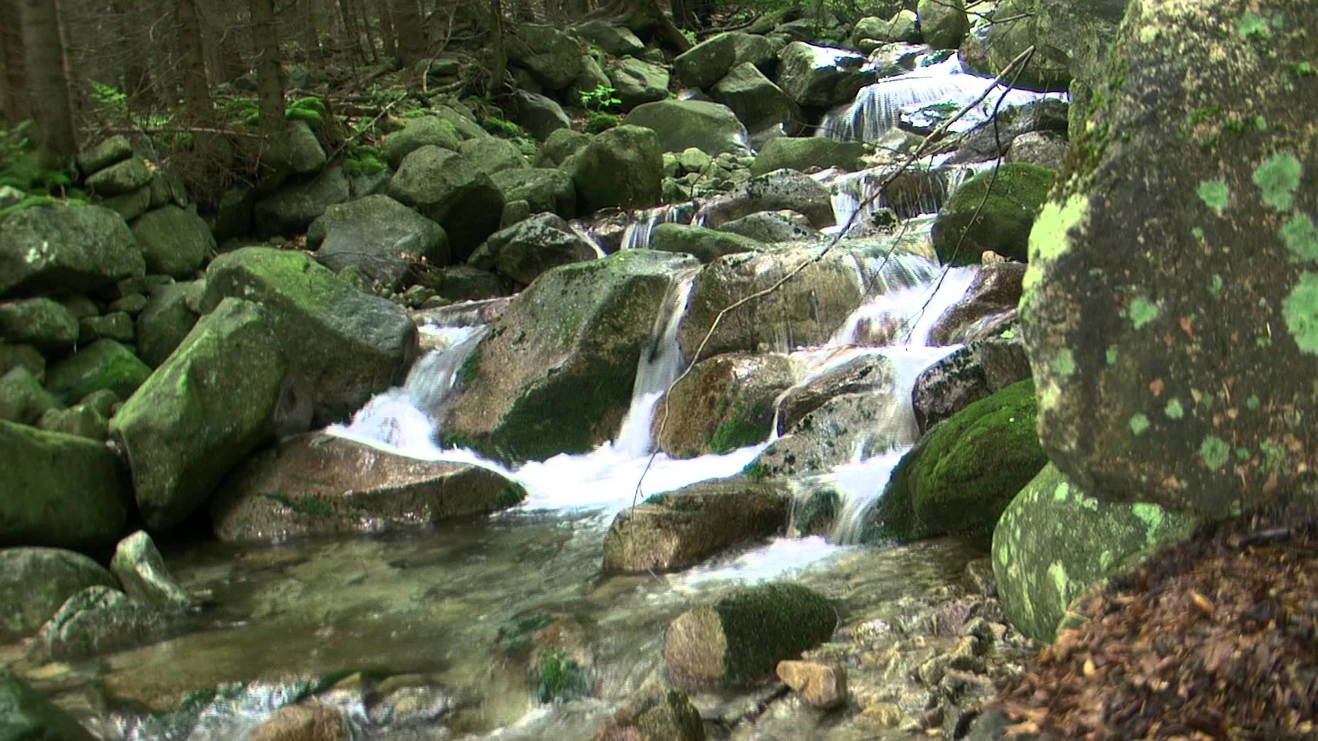 live waterfalls wallpapers with sound 36 images