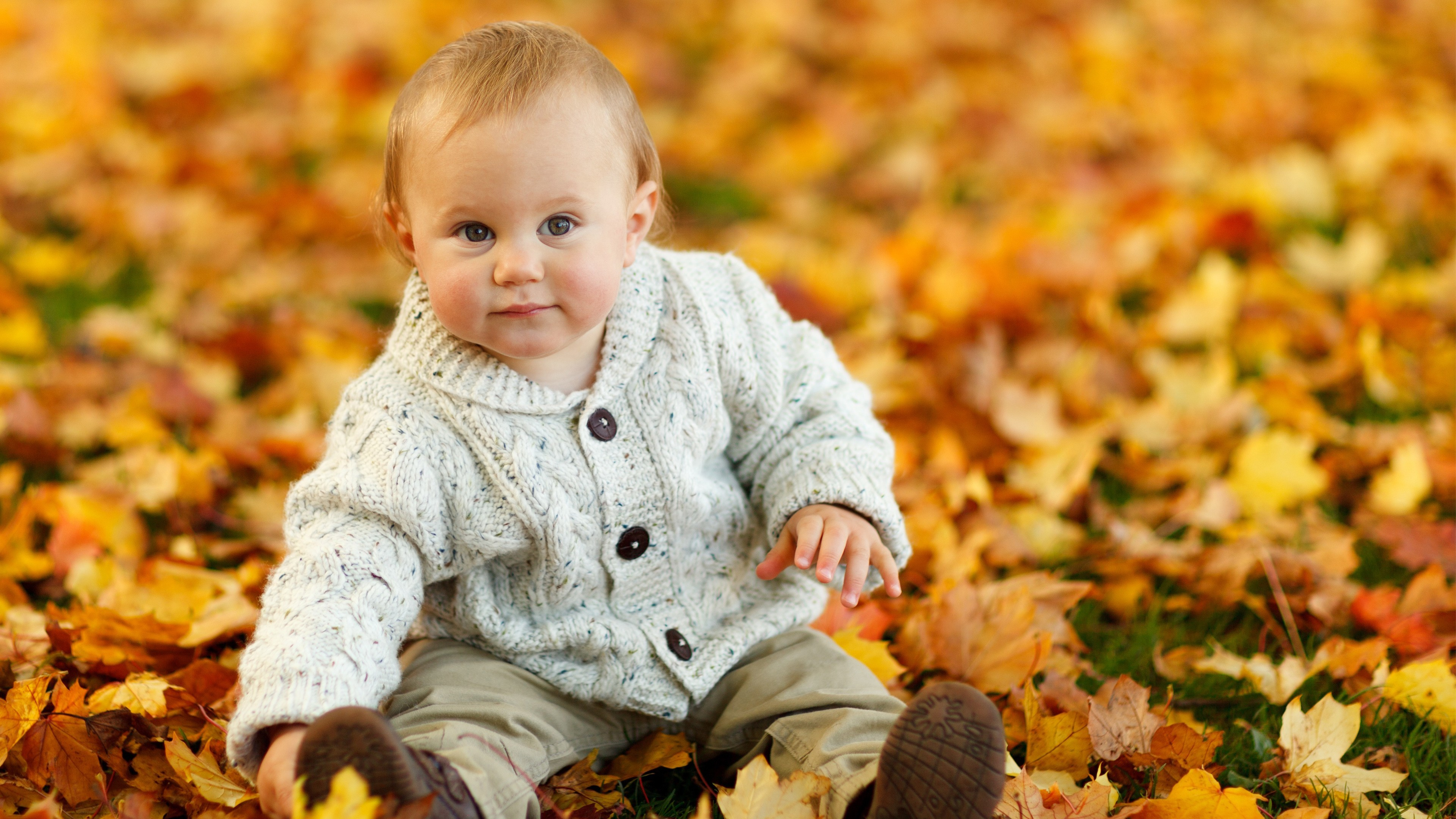 3840x2160 Cute Baby Boy Autumn Leaves