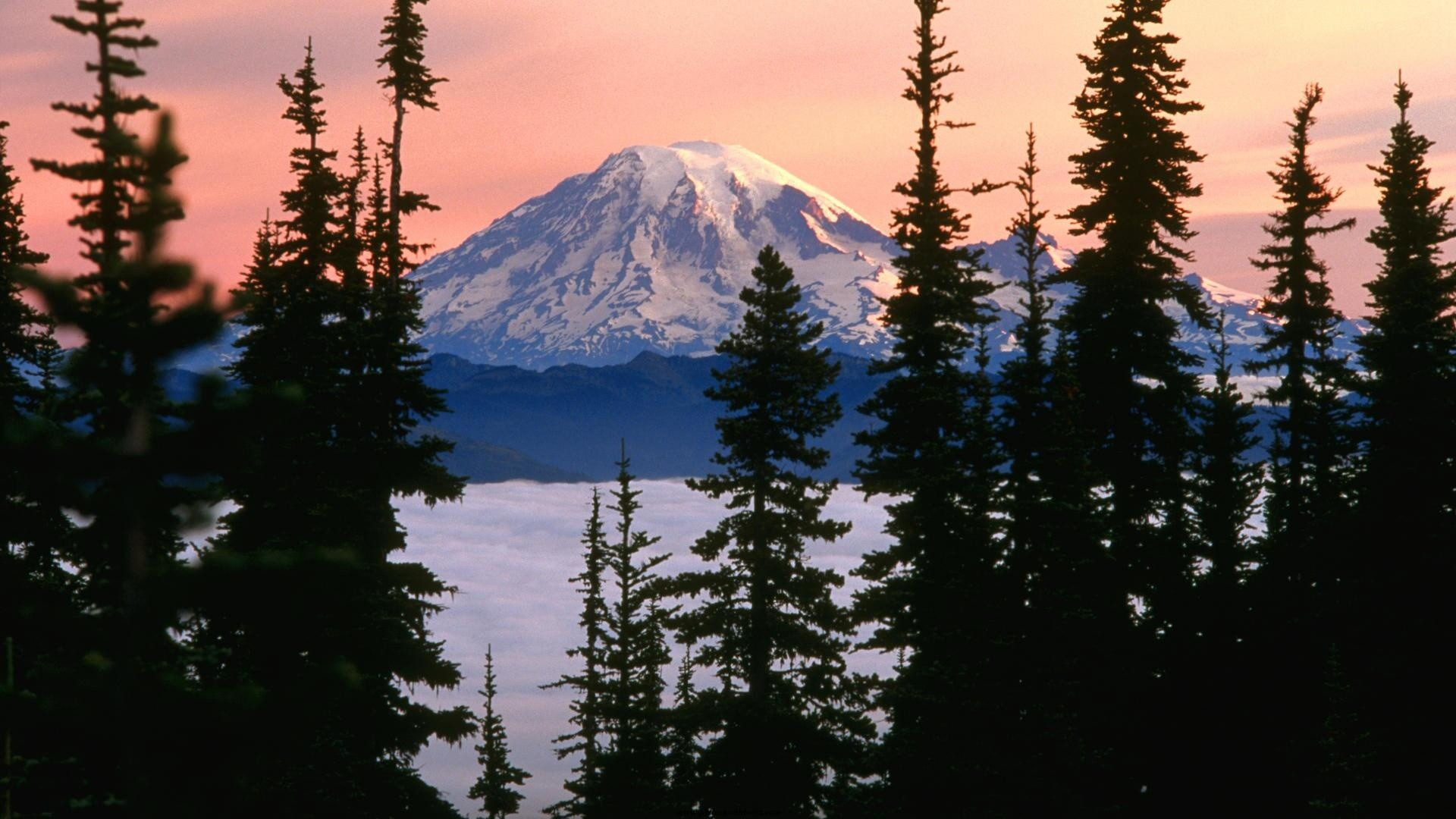 1920x1080 Mount Rainier Washington -  - 406657