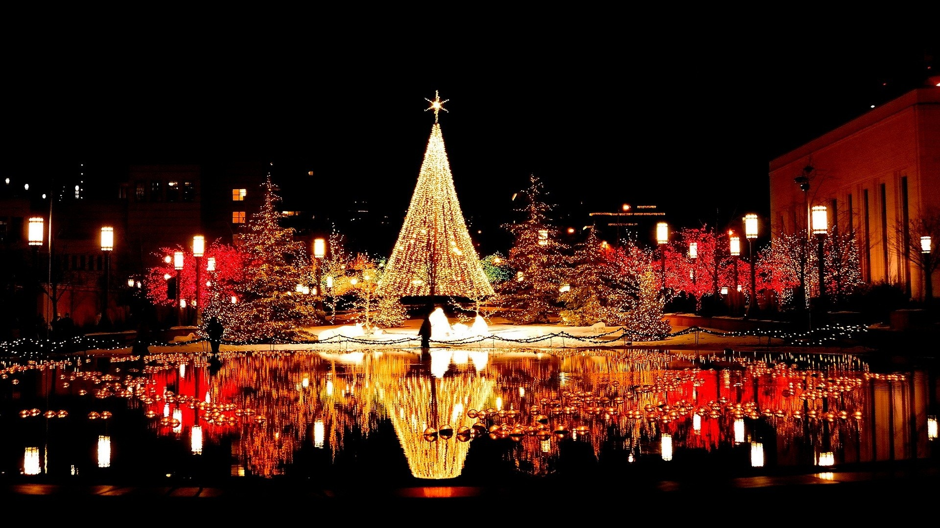 1920x1080 Christmas Reflection Light 1080p Hd Photos