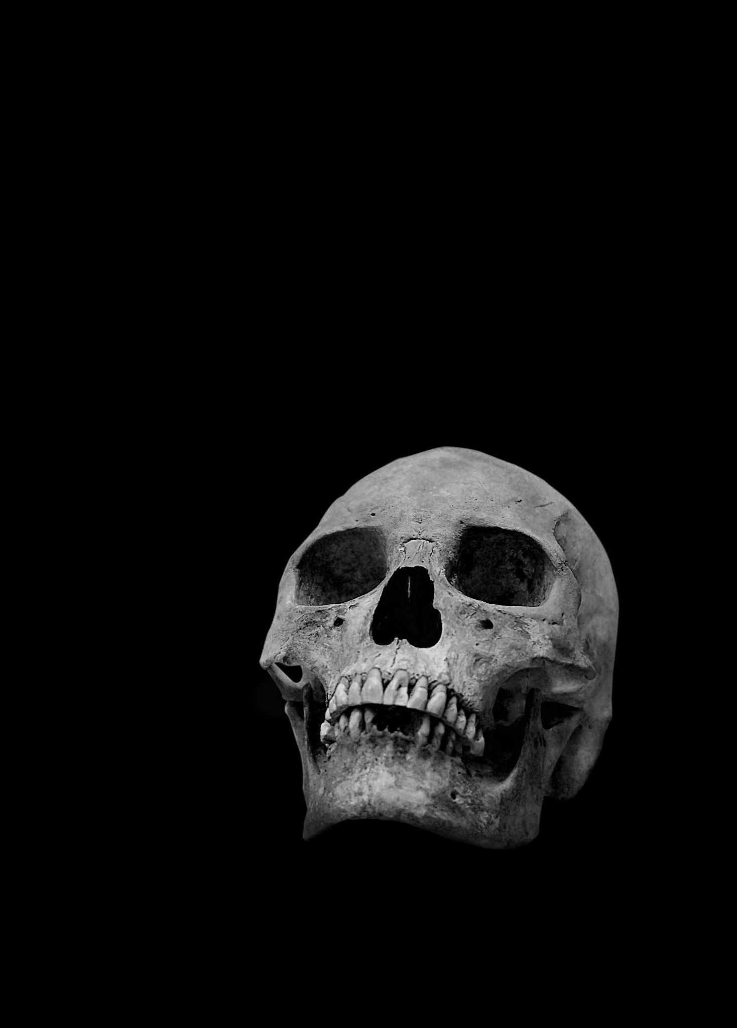 1468x2048 The human skull on a black background in black and white.