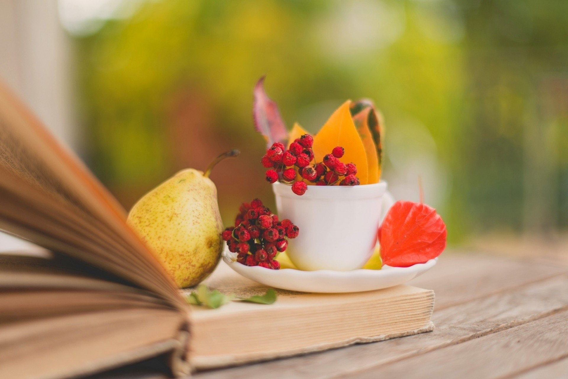 1920x1281 sheet saucer pear book berries red coffee autumn cup