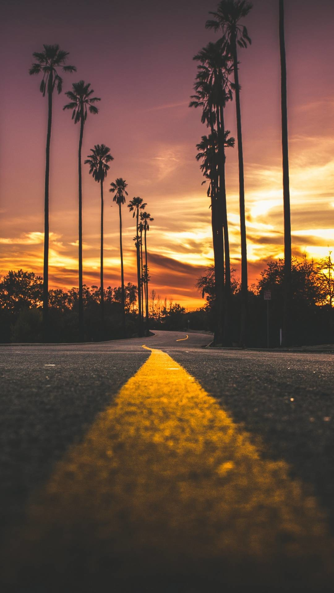 California Sunset Wallpaper 54 Images