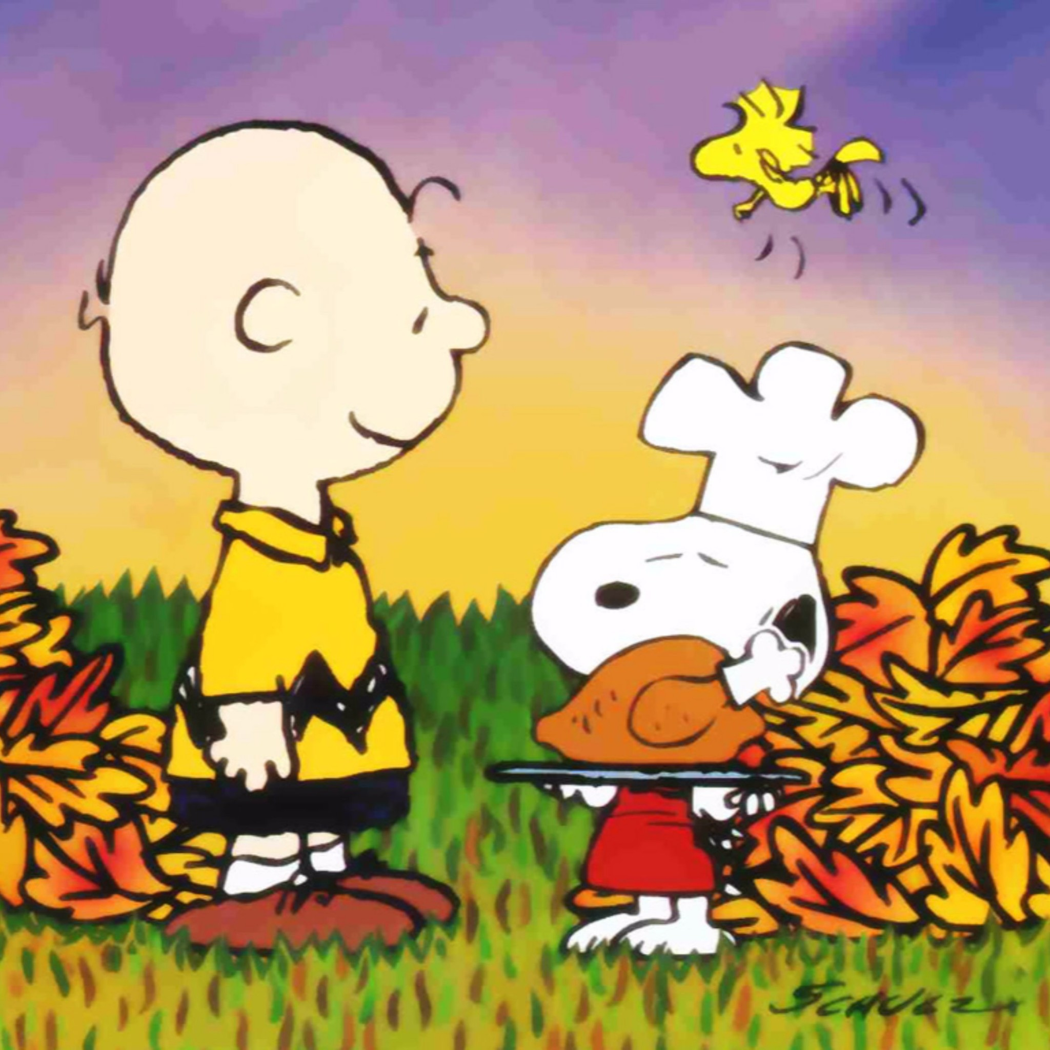 2048x2048 Related to Snoopy Happy Thanksgiving 4K Wallpaper