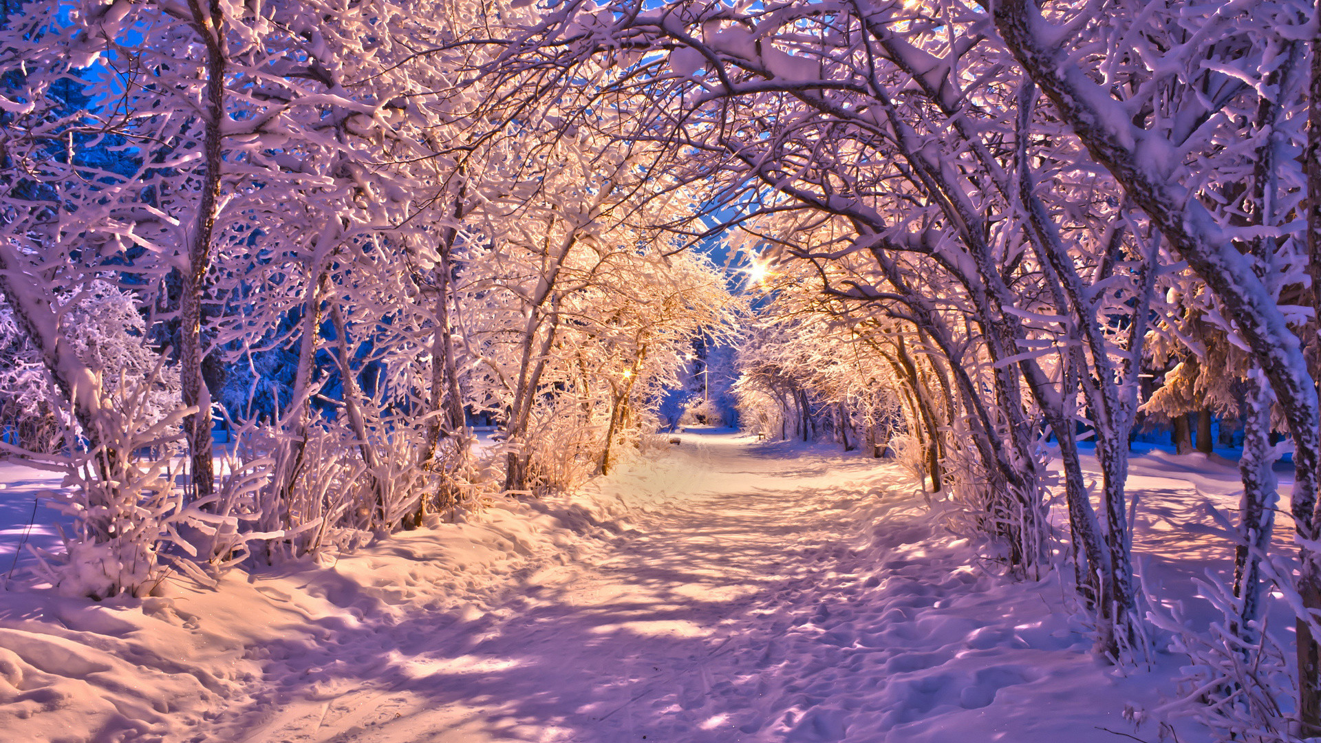1920x1080 snow christmas sidewalk roads lights white trees wallpaper background .