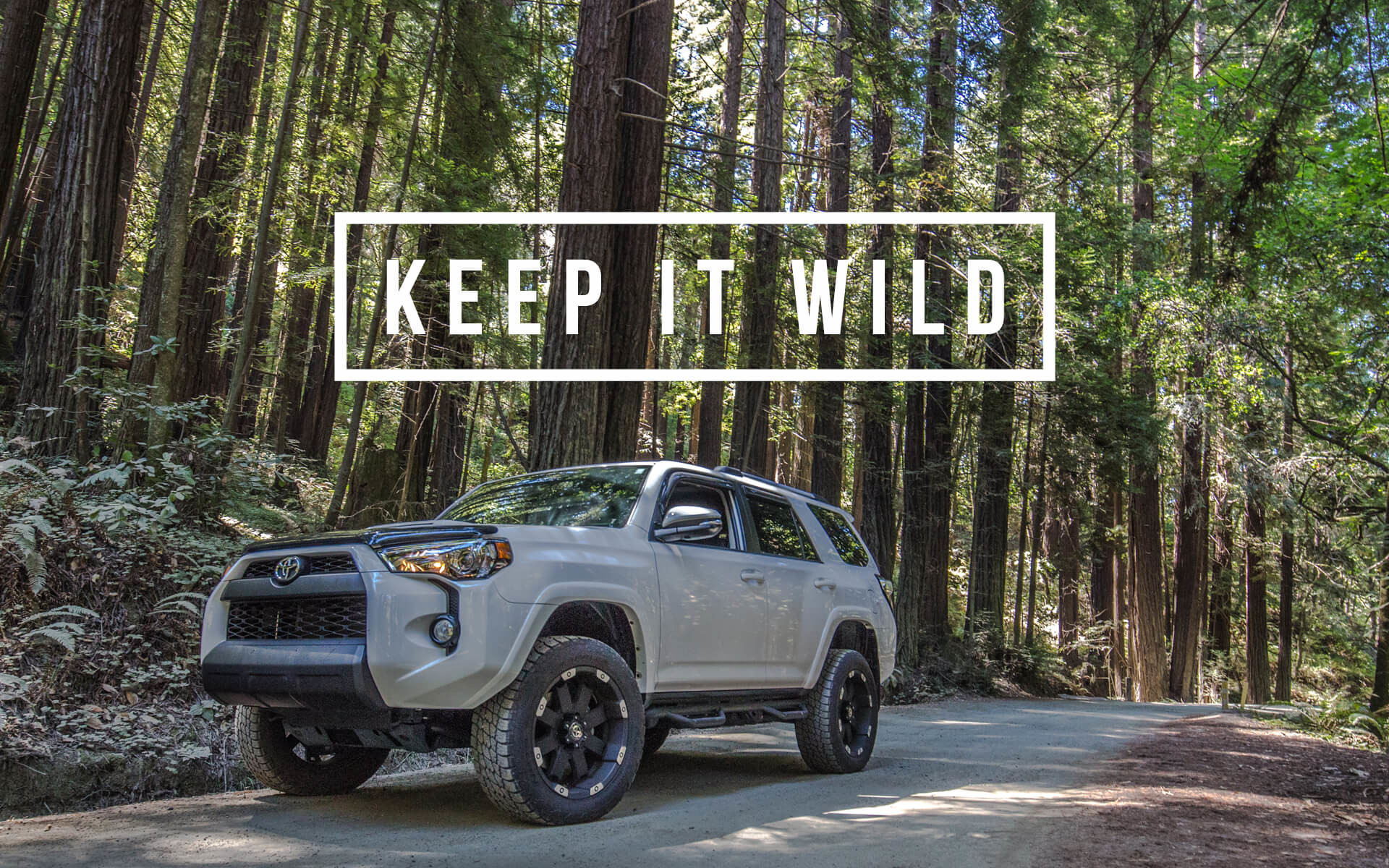 1920x1200 TRD PRO Wallpaper Background - Keep It Wild