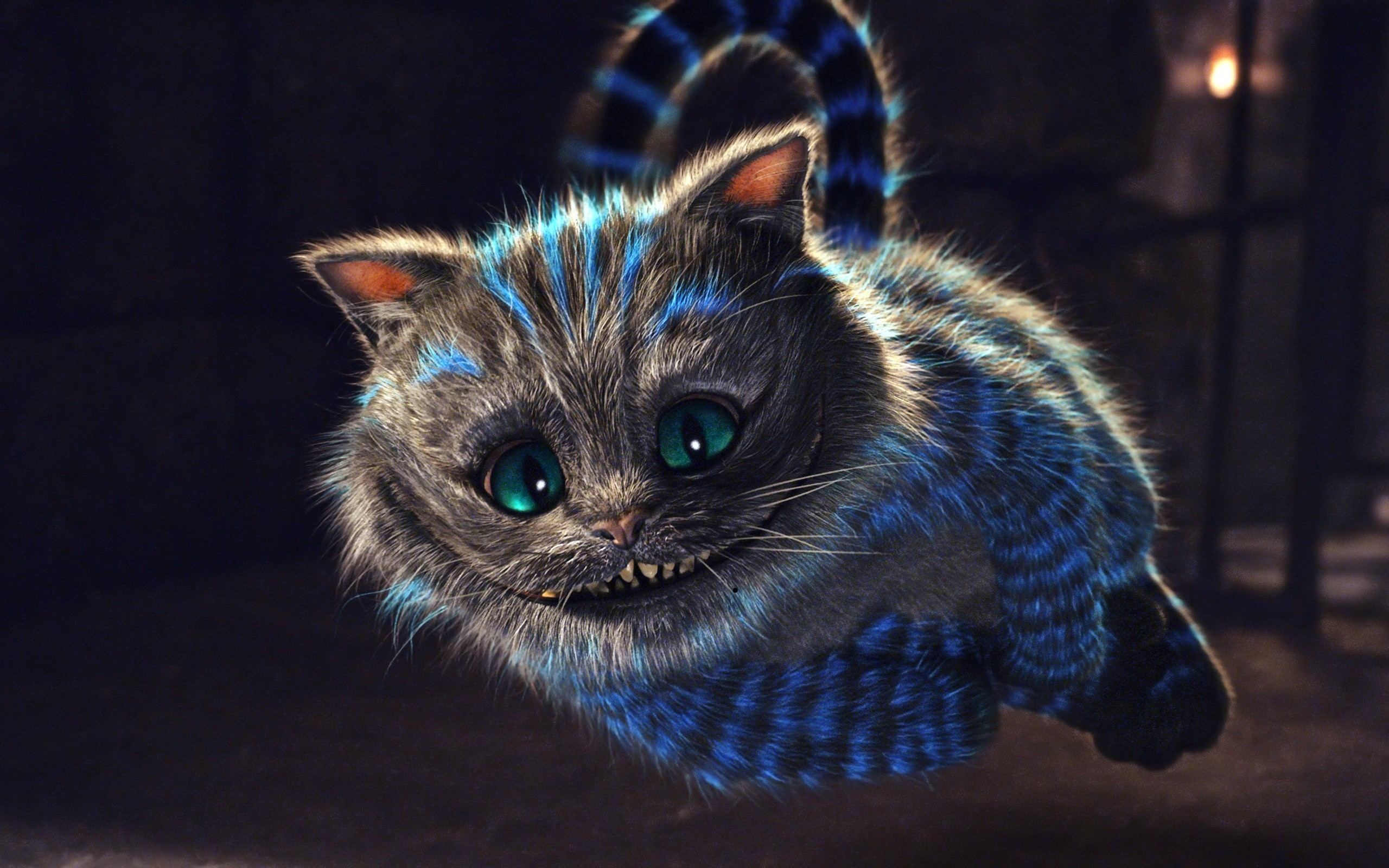 2560x1600  Funny Cartoon Cat Wallpaper For Android Wallpaper with  .