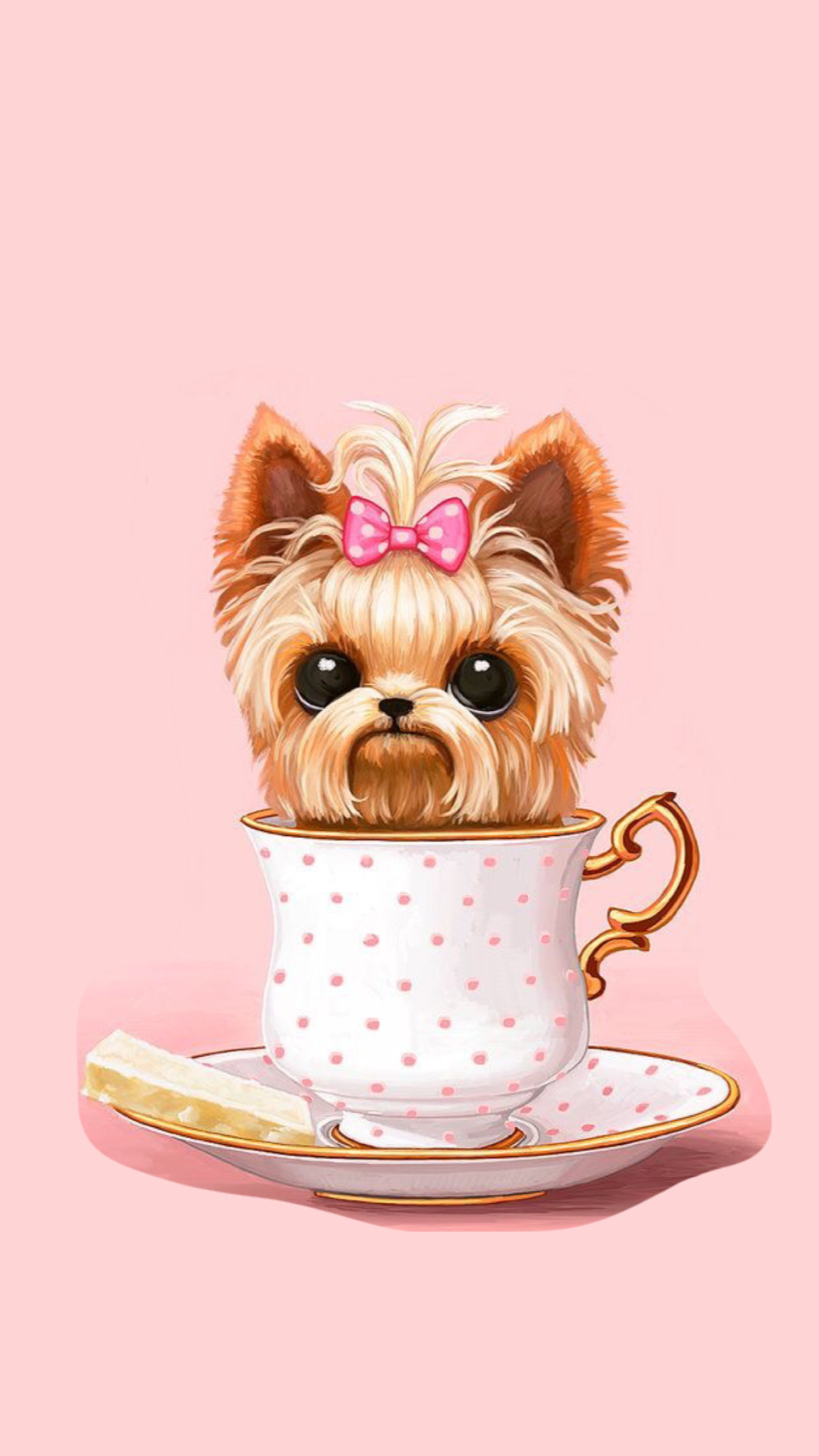 cute wallpapers yorkie iphone jojo apple paris girly backgrounds background dog teacup yorkshire puppy pink siwa perro fondos perros cross